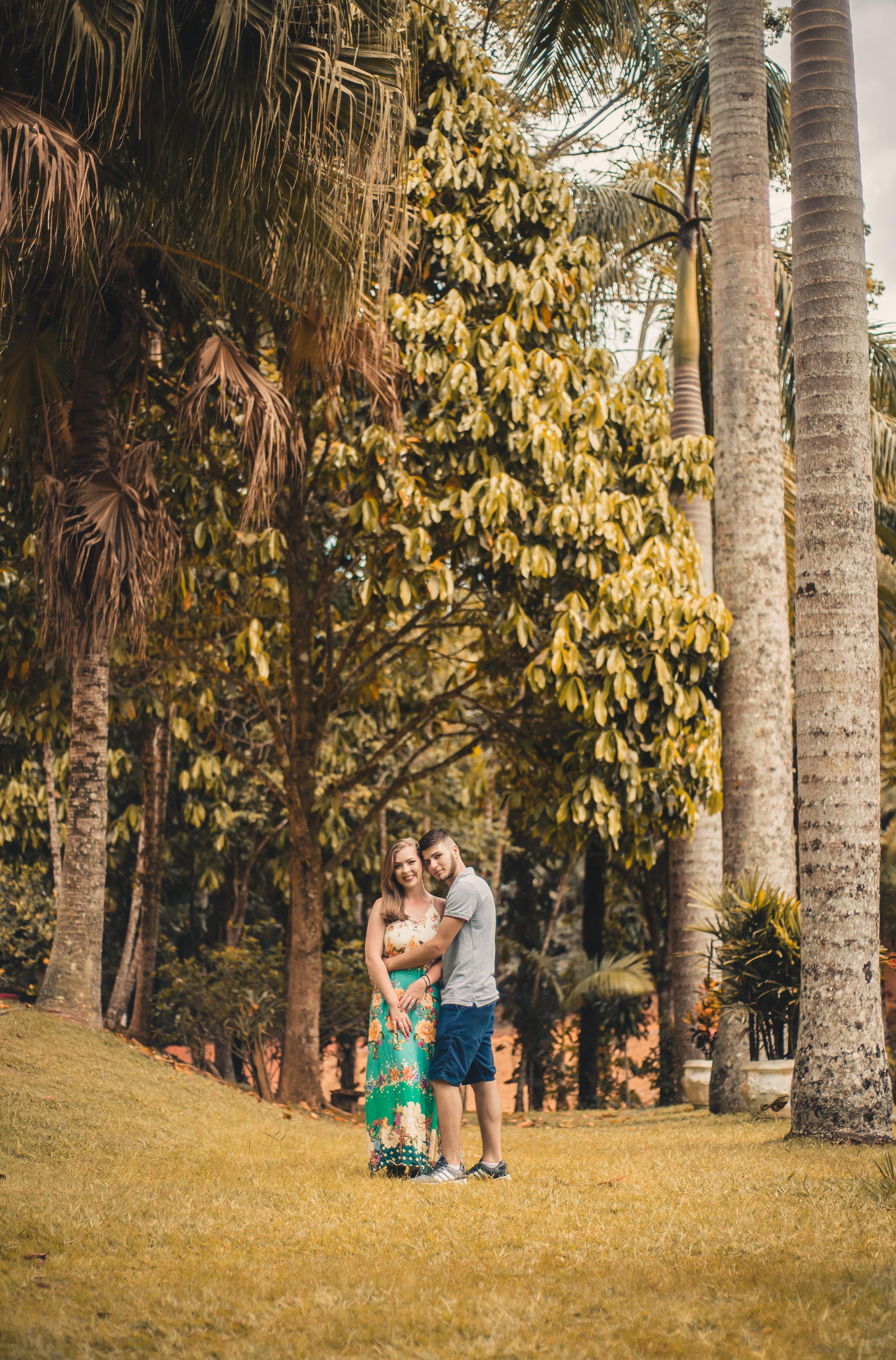 40+ Gambar Rumah Orang Pohon Gratis Terbaik