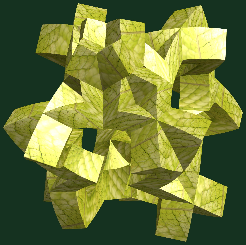 Fotos gratis : abstracto, estructura, textura, hoja, flor, patrón ...