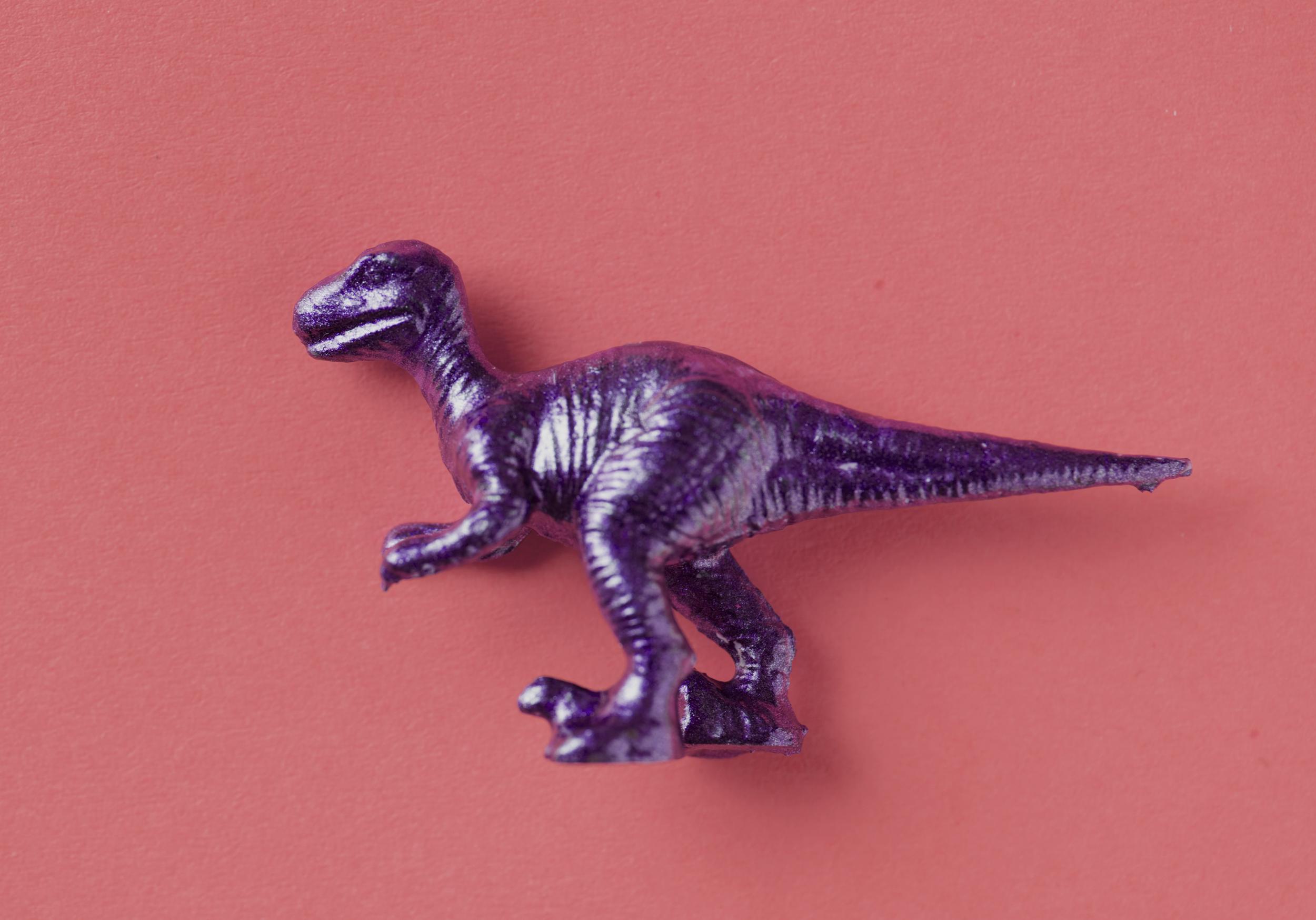 20 Stegosaurus Soft Plastic Dinosaur Large