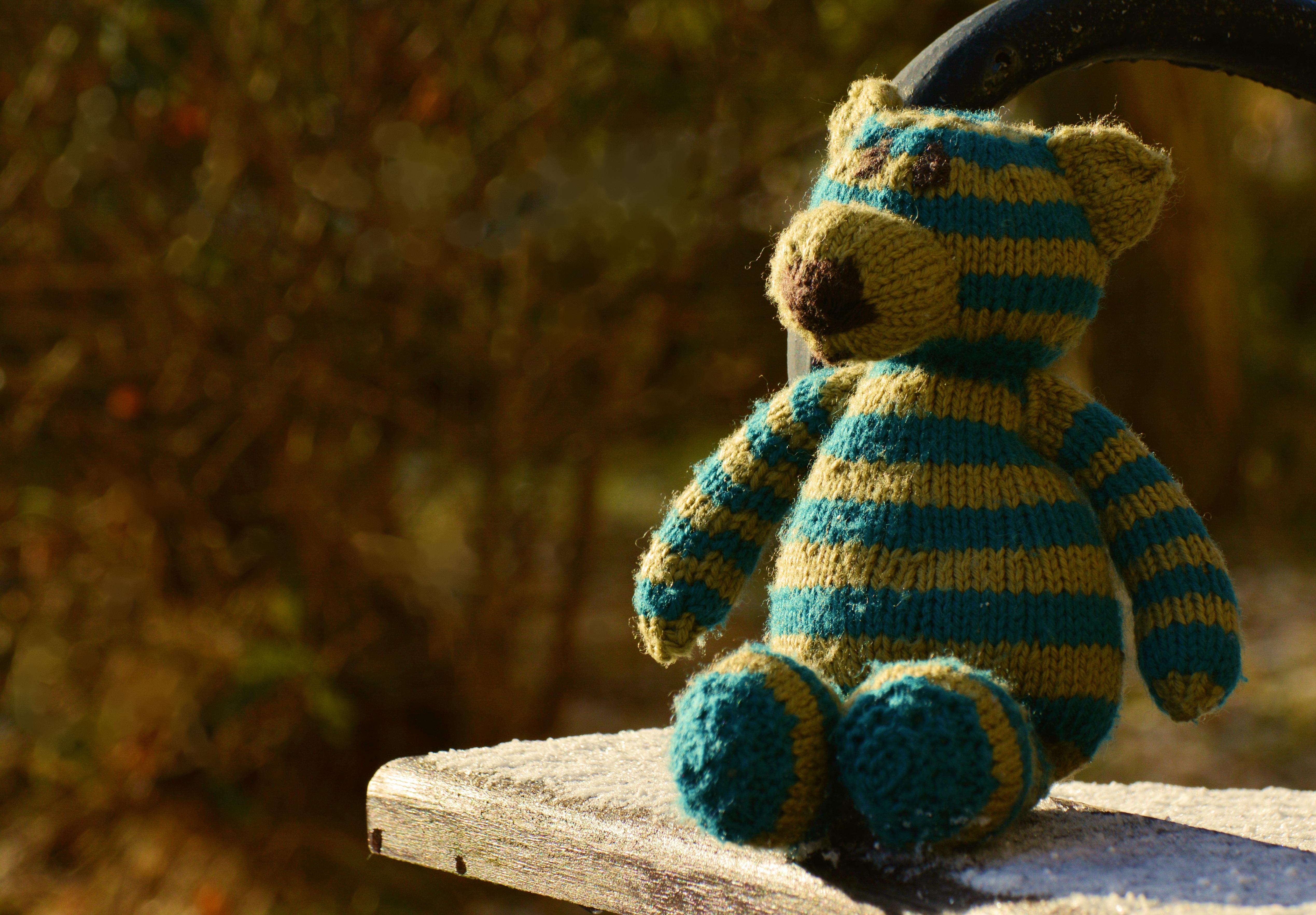 Fotos gratis : solo, verde, solitario, juguete, lana, oso de peluche ...