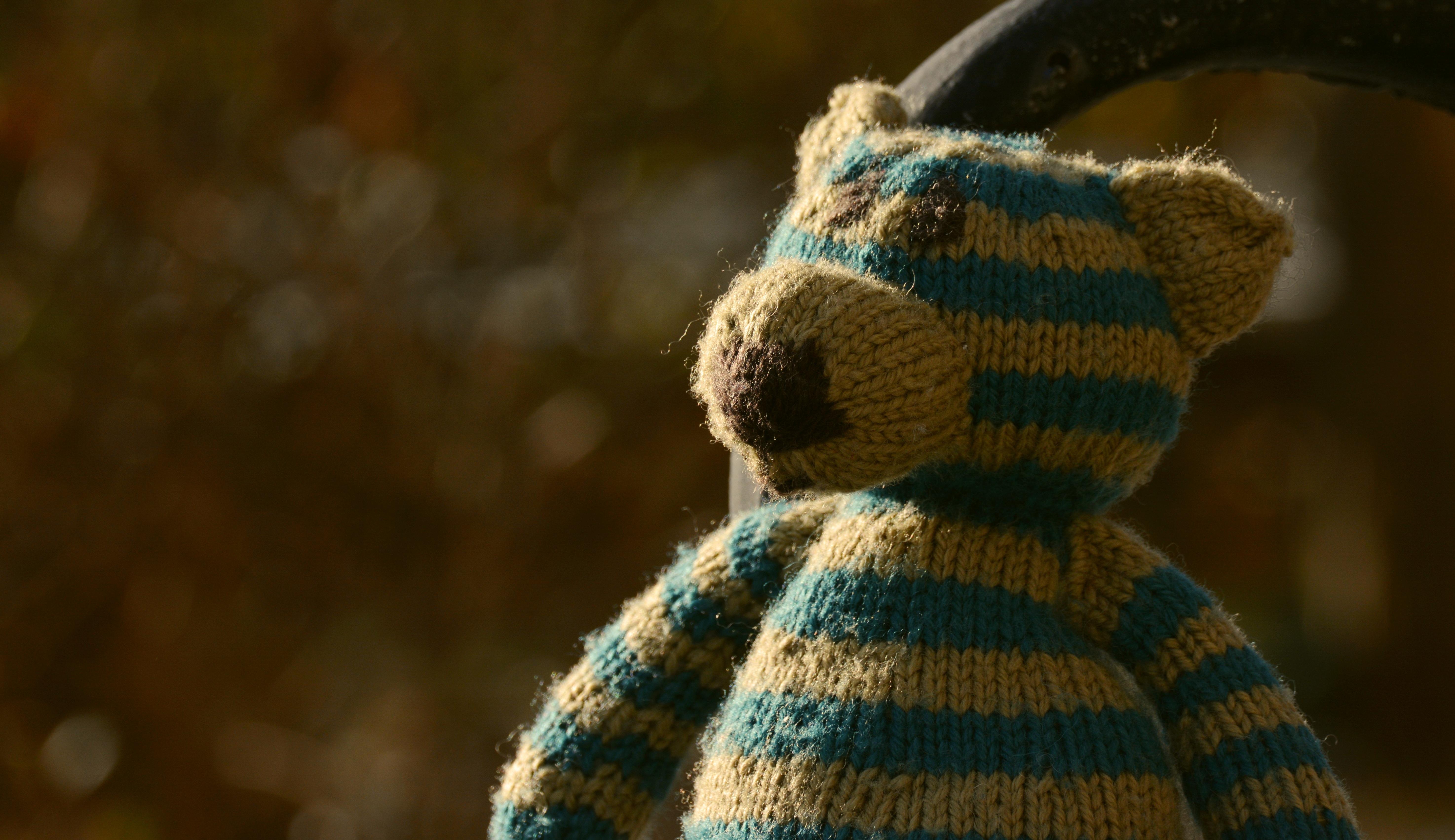 Kostenlose foto : allein, Bär, einsam, Spielzeug, Wolle, Teddybär ...
