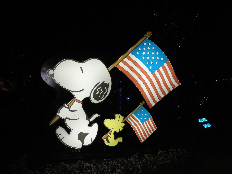 Gambar Bendera Amerika Kegelapan Patriotisme Seni Ilustrasi