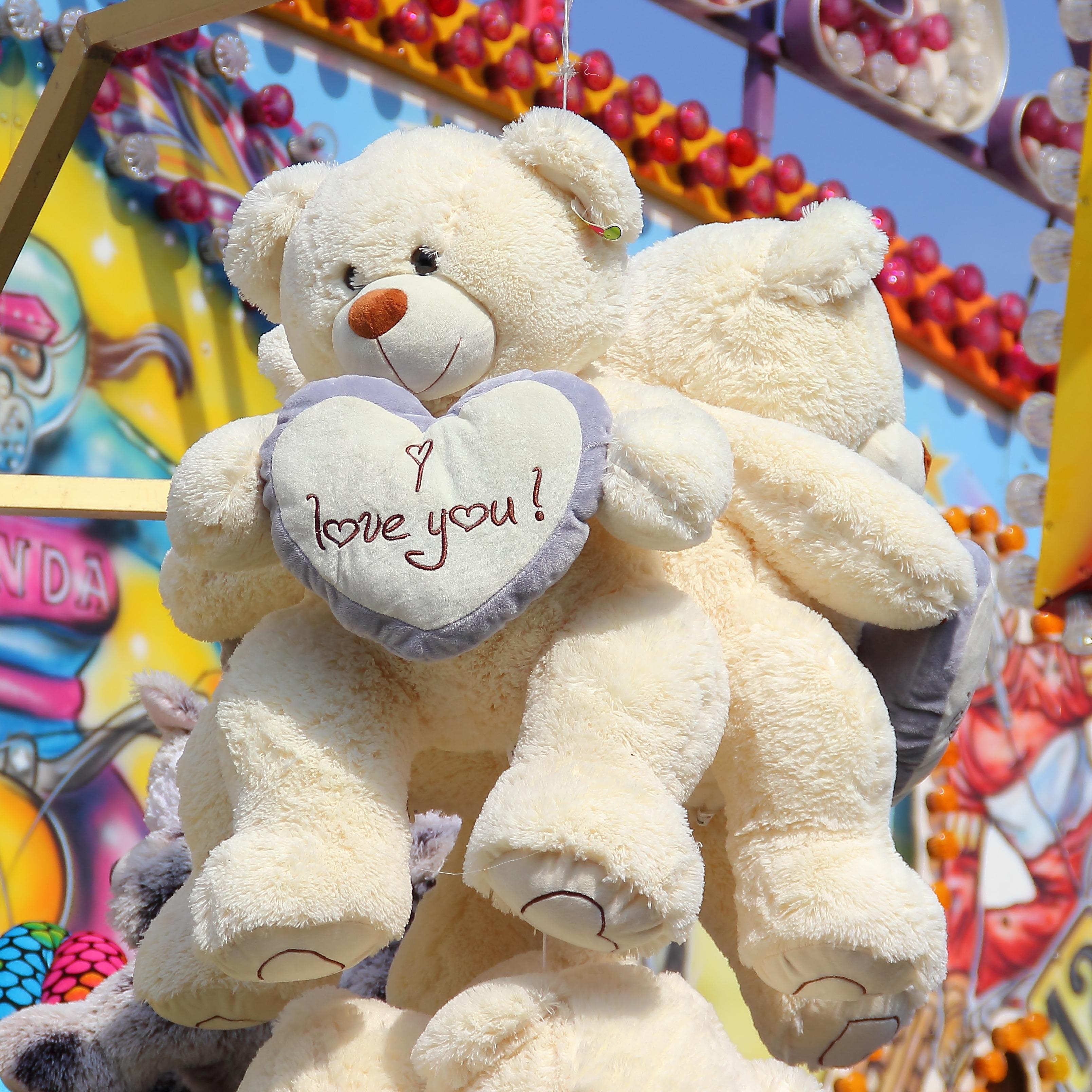 Free Images : cute, heart, colorful, leisure, fairground, teddy bear,  textile, affection, fun, animals, bears, plush, stuffed animal, fair,  pleasure, ...