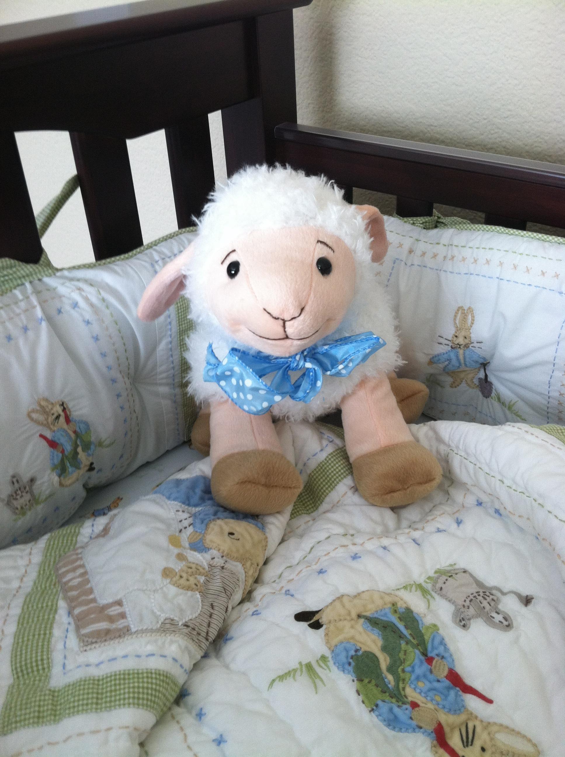Fotos gratis : animal, oveja, mueble, juguete, bebé, material ...