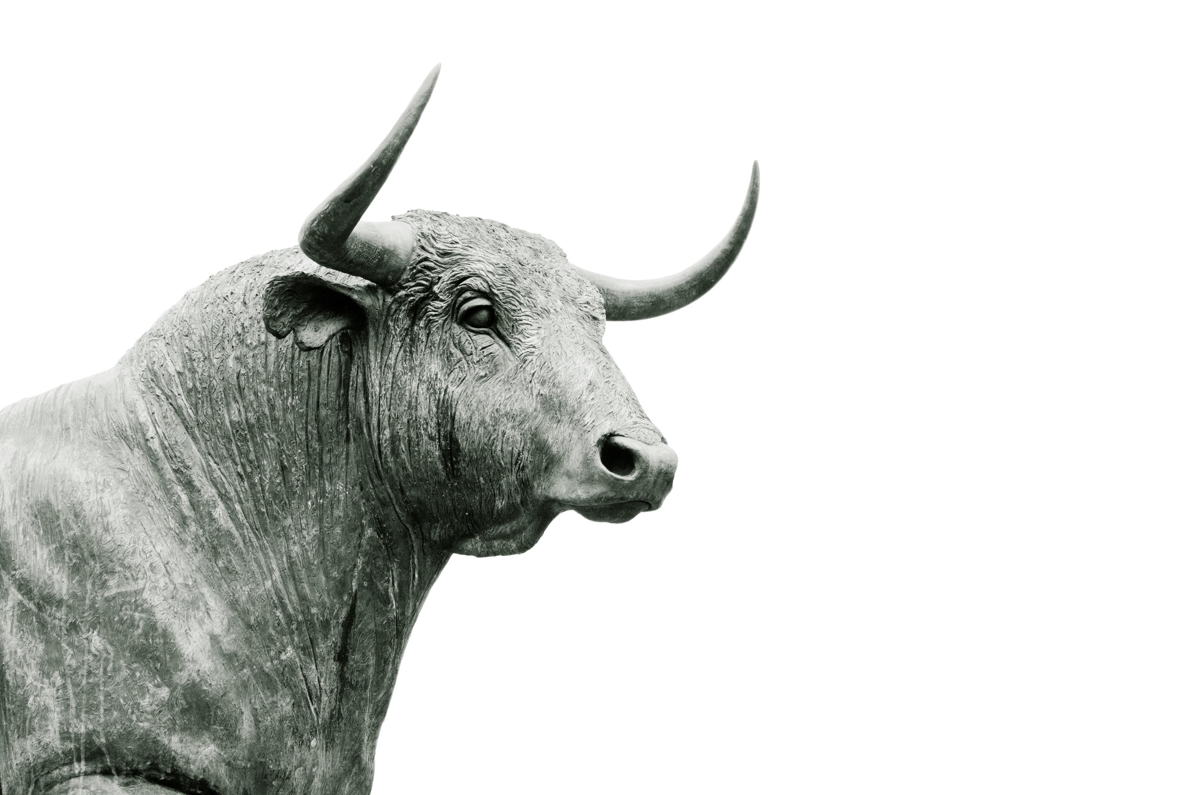 images gratuites animal statue corne taureau sculpture t te b uf b tail comme le. Black Bedroom Furniture Sets. Home Design Ideas
