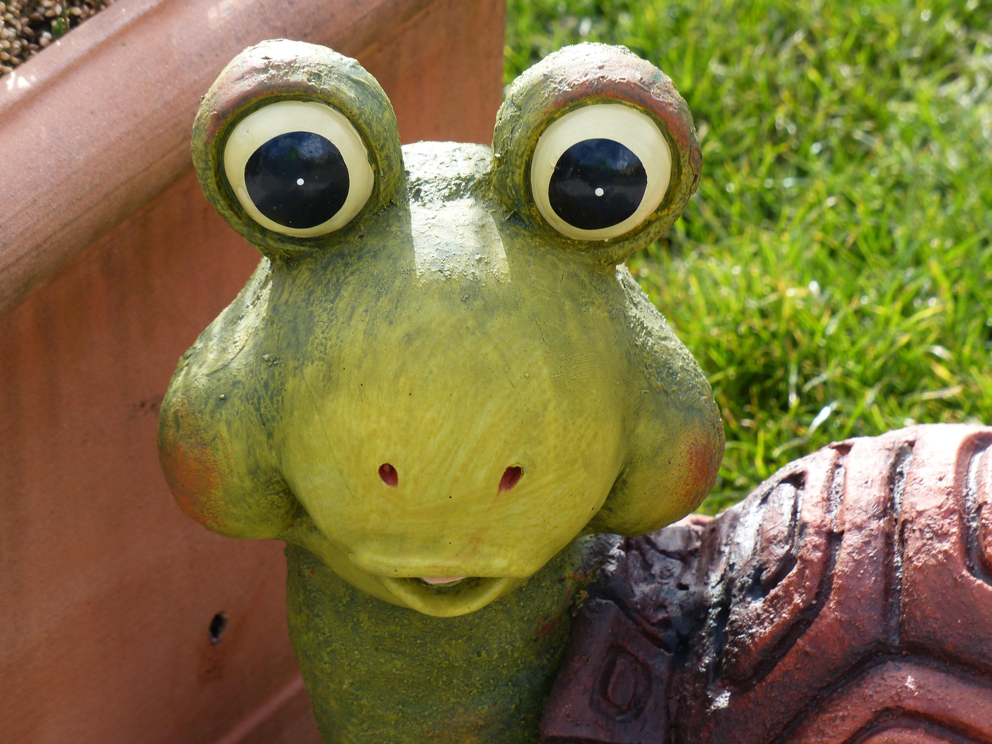 Animal Wildlife Decoration Green Ceramic Turtle Frog Amphibian Garden  Pottery Toy Fauna Close Up Eyes Figure