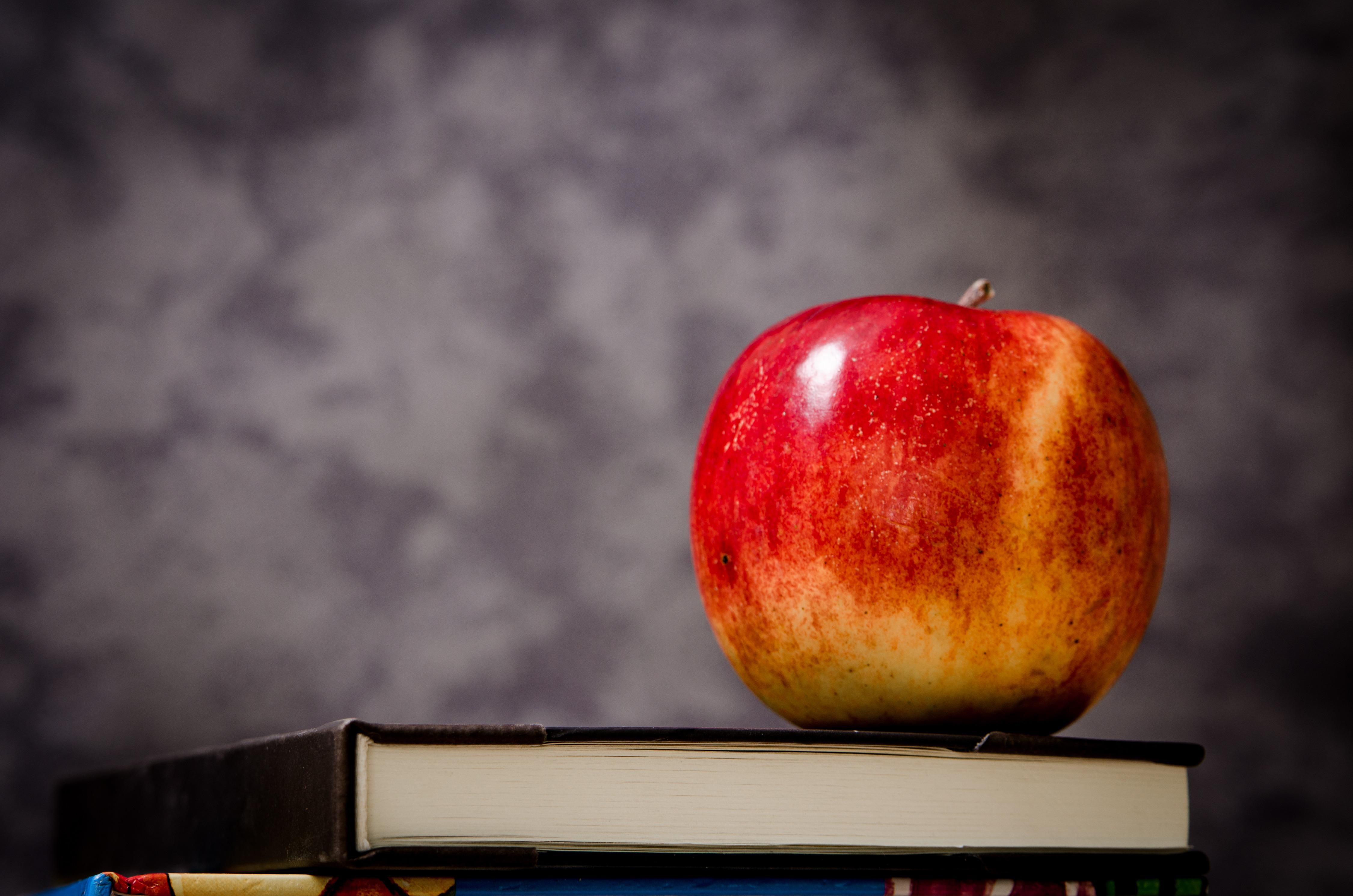 Immagini Belle Mela Libro Frutta Fiore Cibo Rosso Produrre
