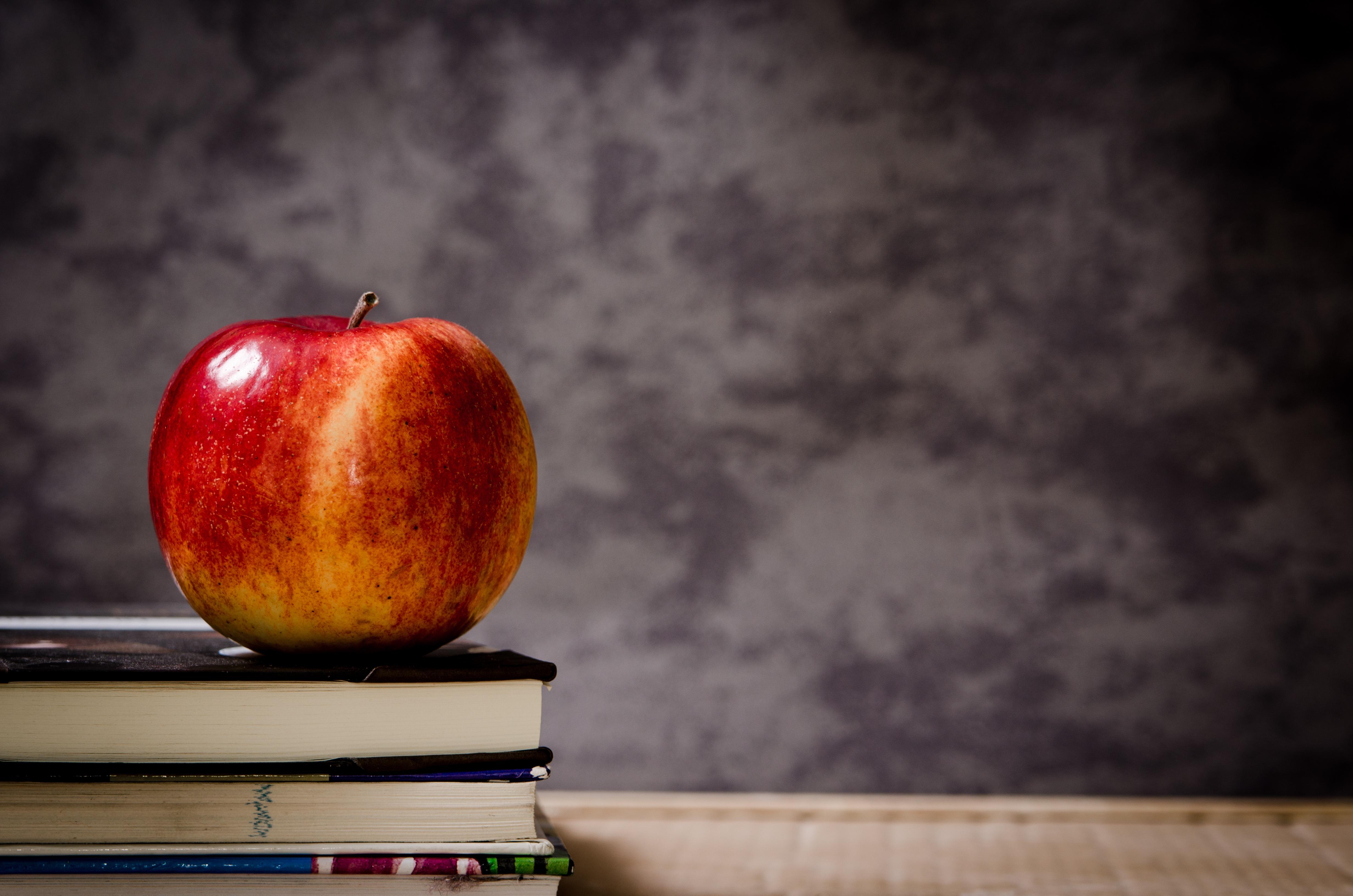 Fotoğraf Elma Kitap Meyve Sabah çiçek Gıda Kırmızı üretmek