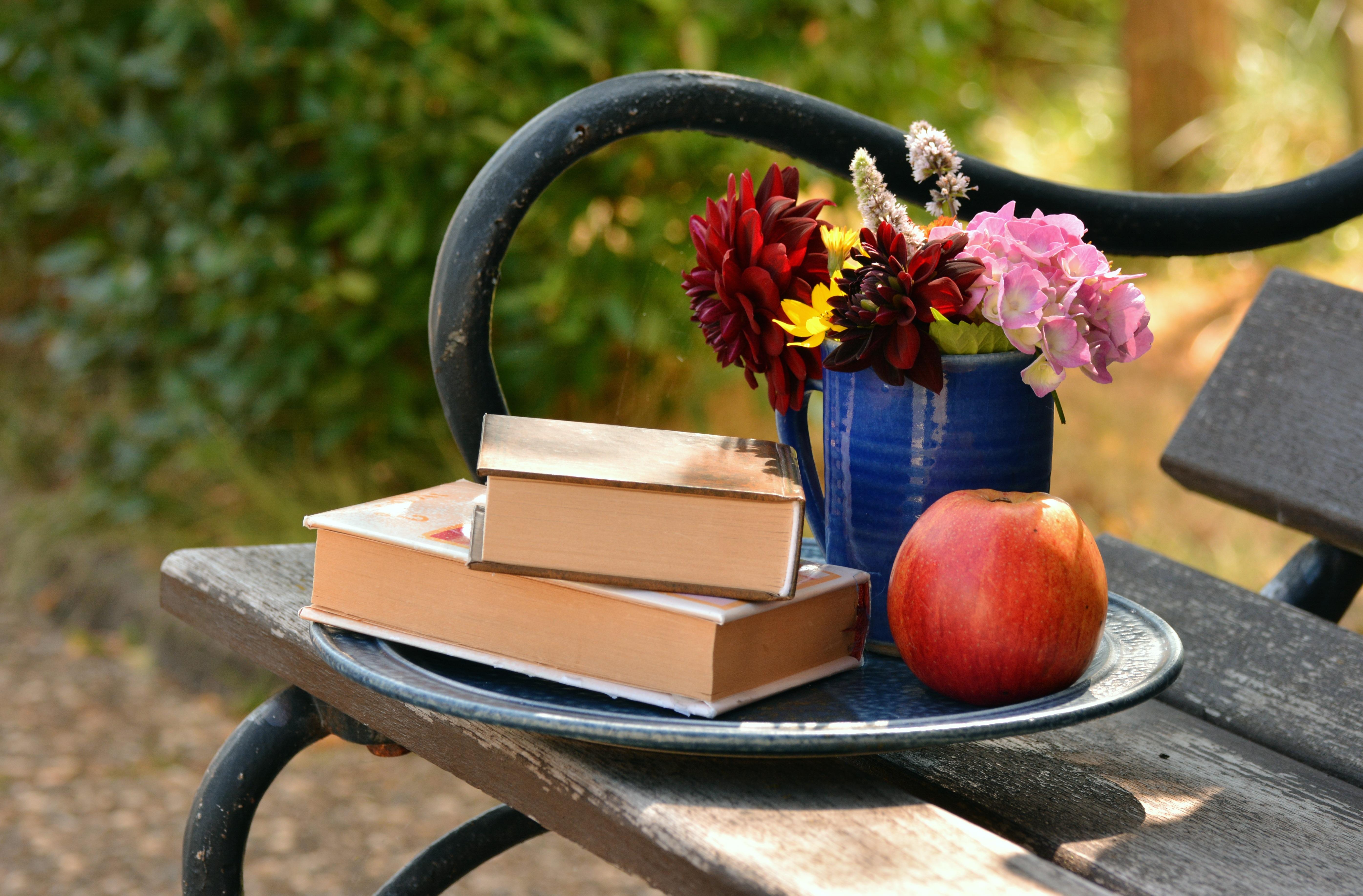 Kostenlose Foto Apfel Buch Lesen Rad Karte Blume