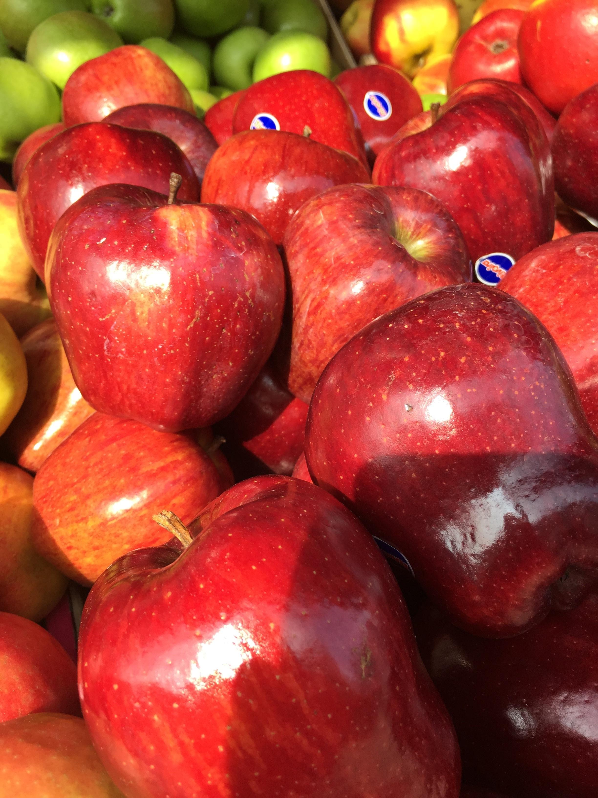 menggambar apel merah