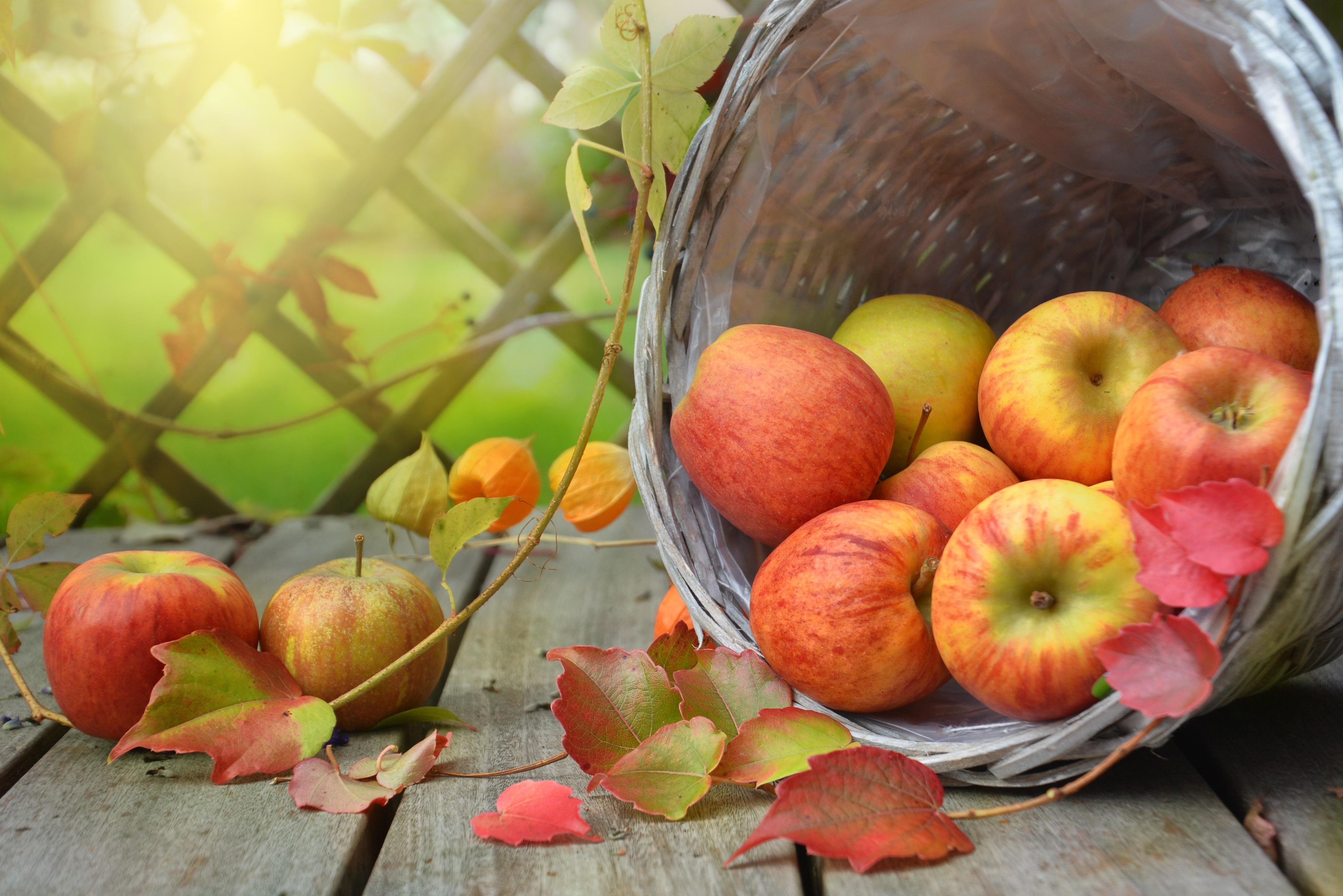 картинка на рабочий стол осень фрукты предоставляется