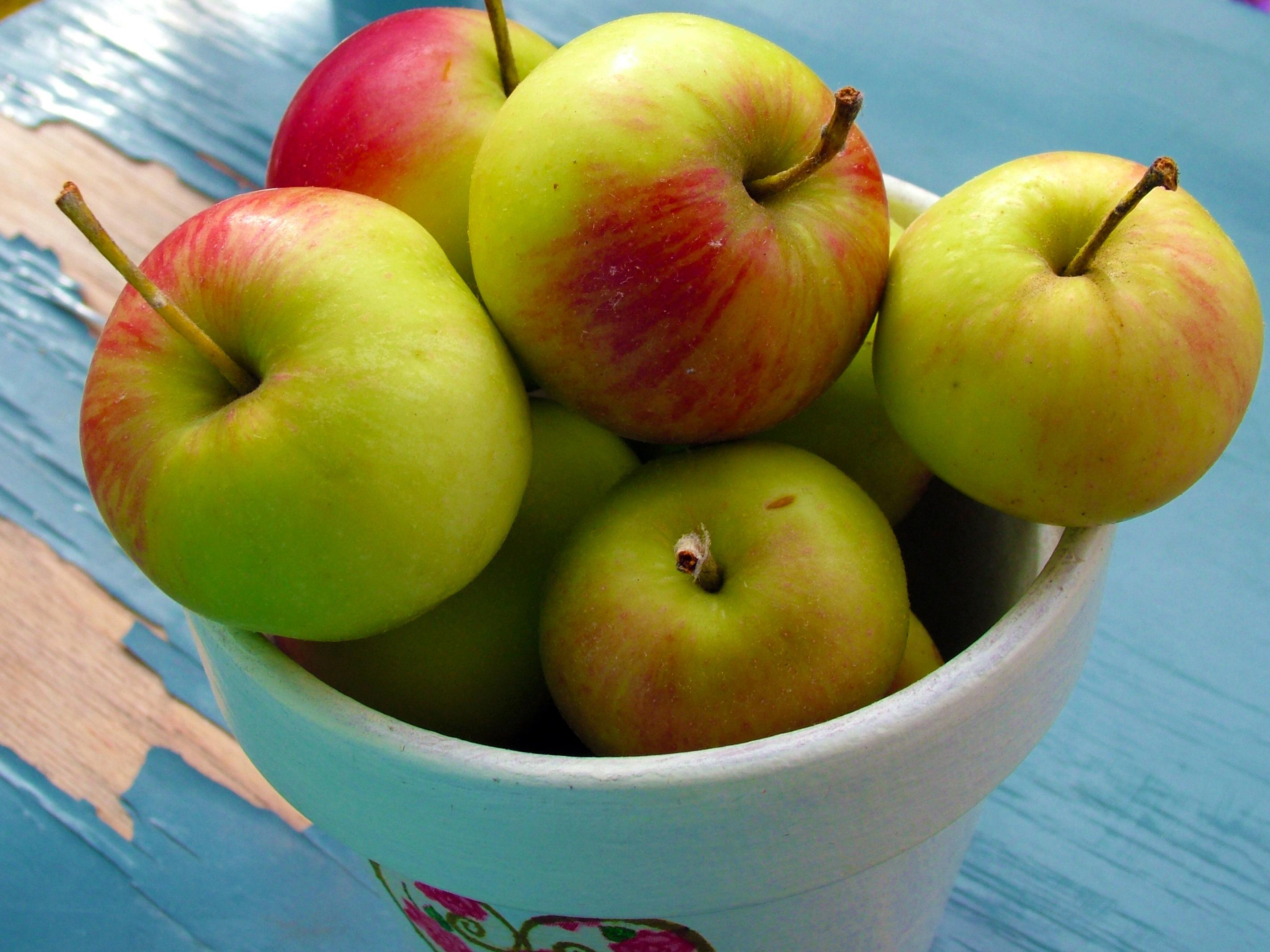 картинка яблок зеленых и красных что ему суждено