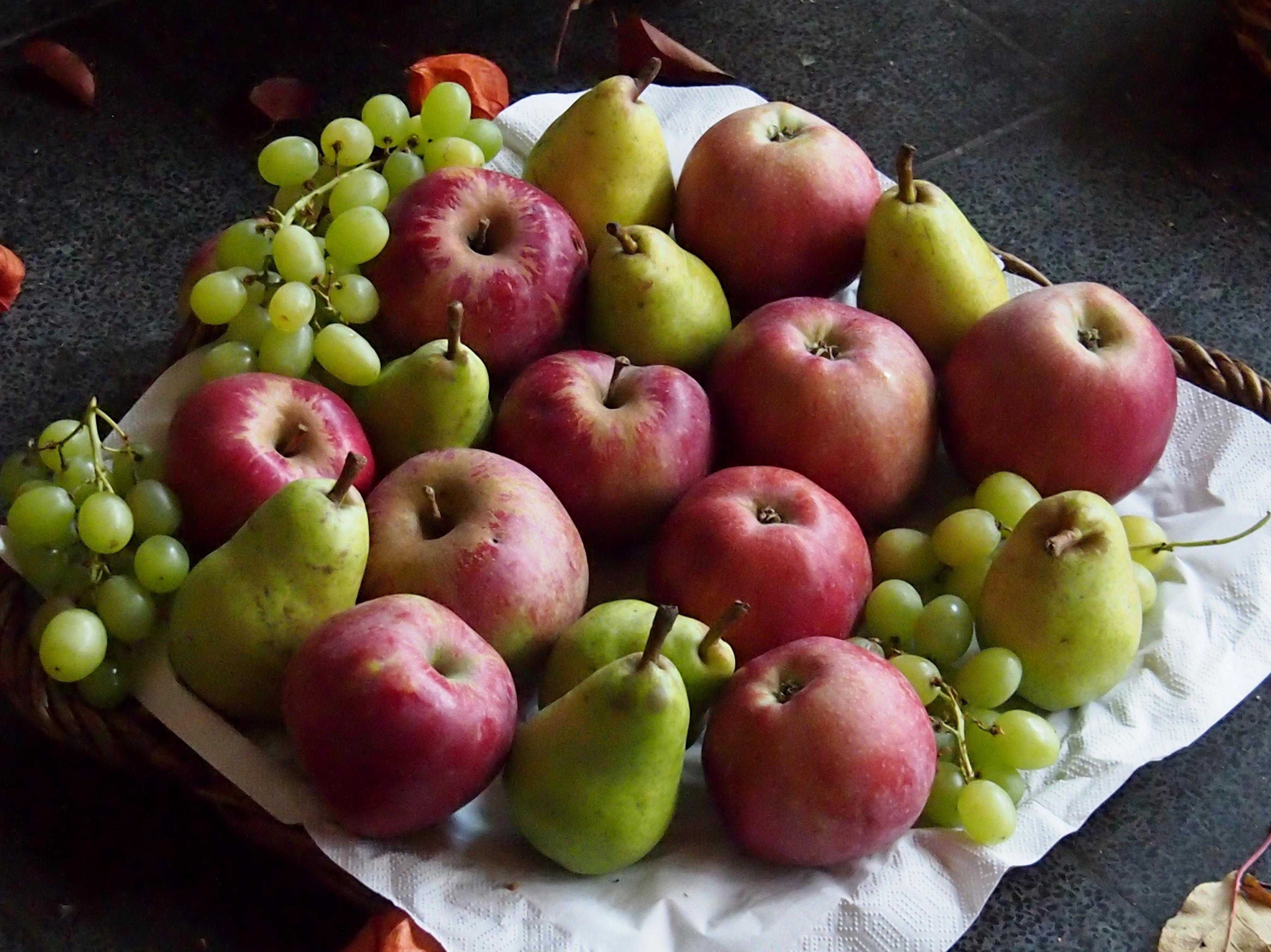 100 Gambar Apel Dan Anggur HD