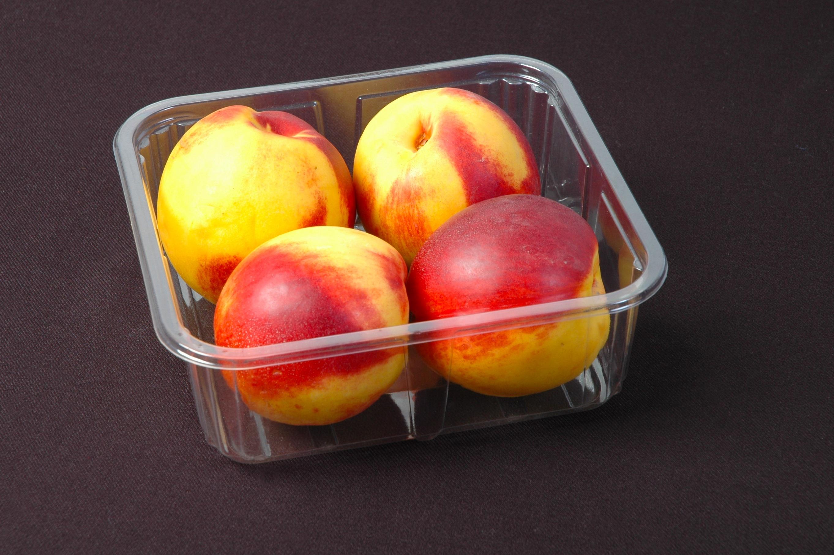 Fotoğraf Elma Meyve Gıda üretmek Abur Cubur Natürmort Boyama