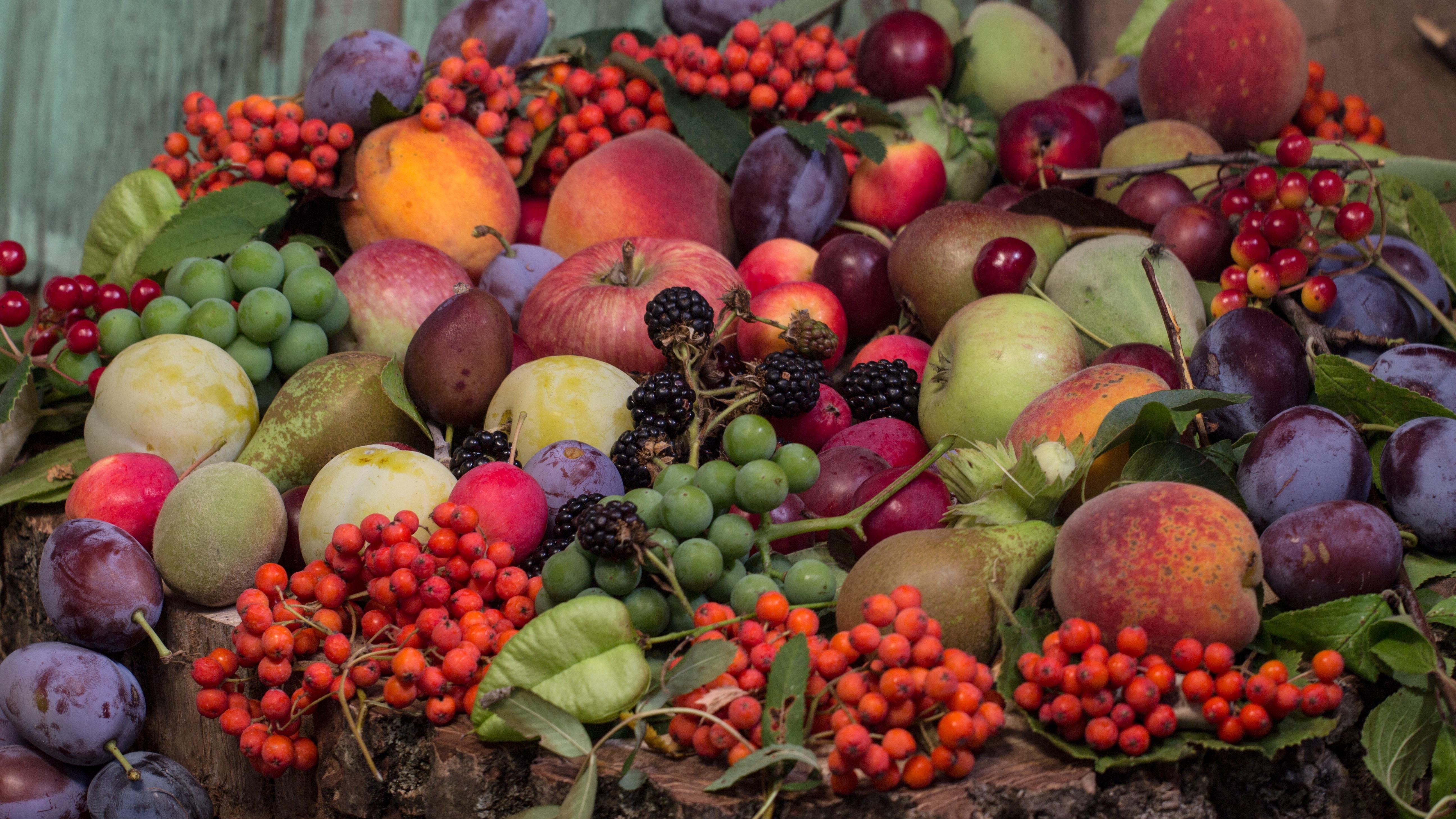 платные фото культурных плодов овощей ягод россии постройки