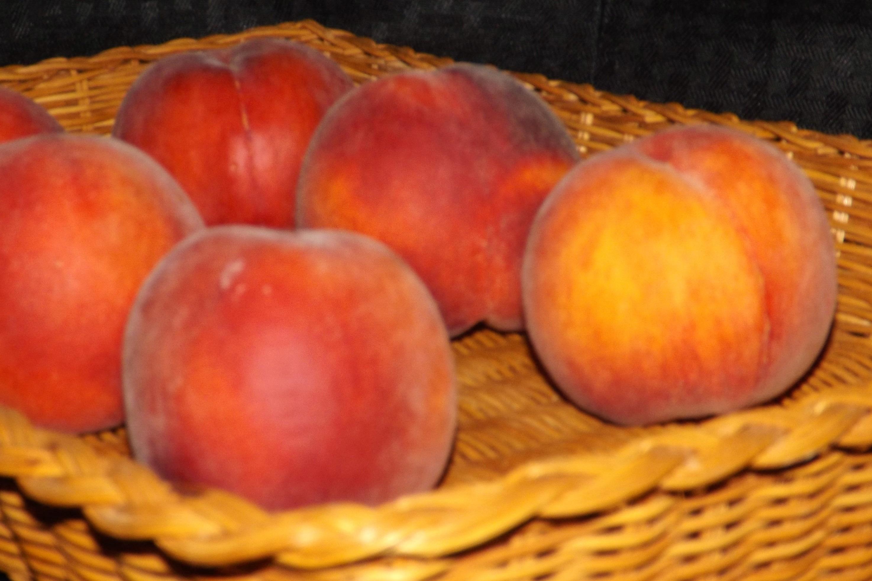 Fotoğraf Elma Meyve Gıda üretmek Natürmort Boyama şeftali