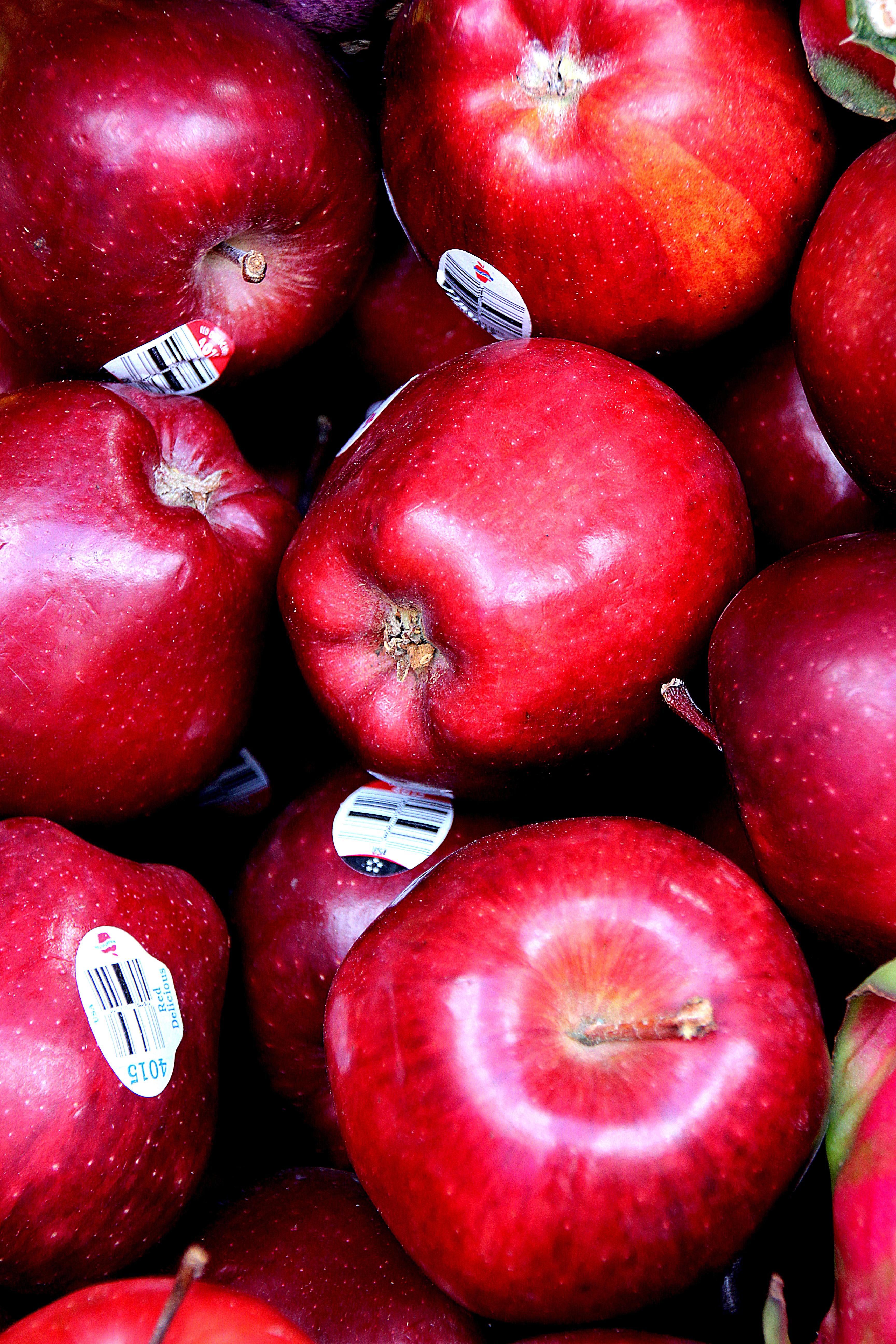 Fotoğraf Elma Meyve Gıda Kırmızı Mutfak üretmek Renkli