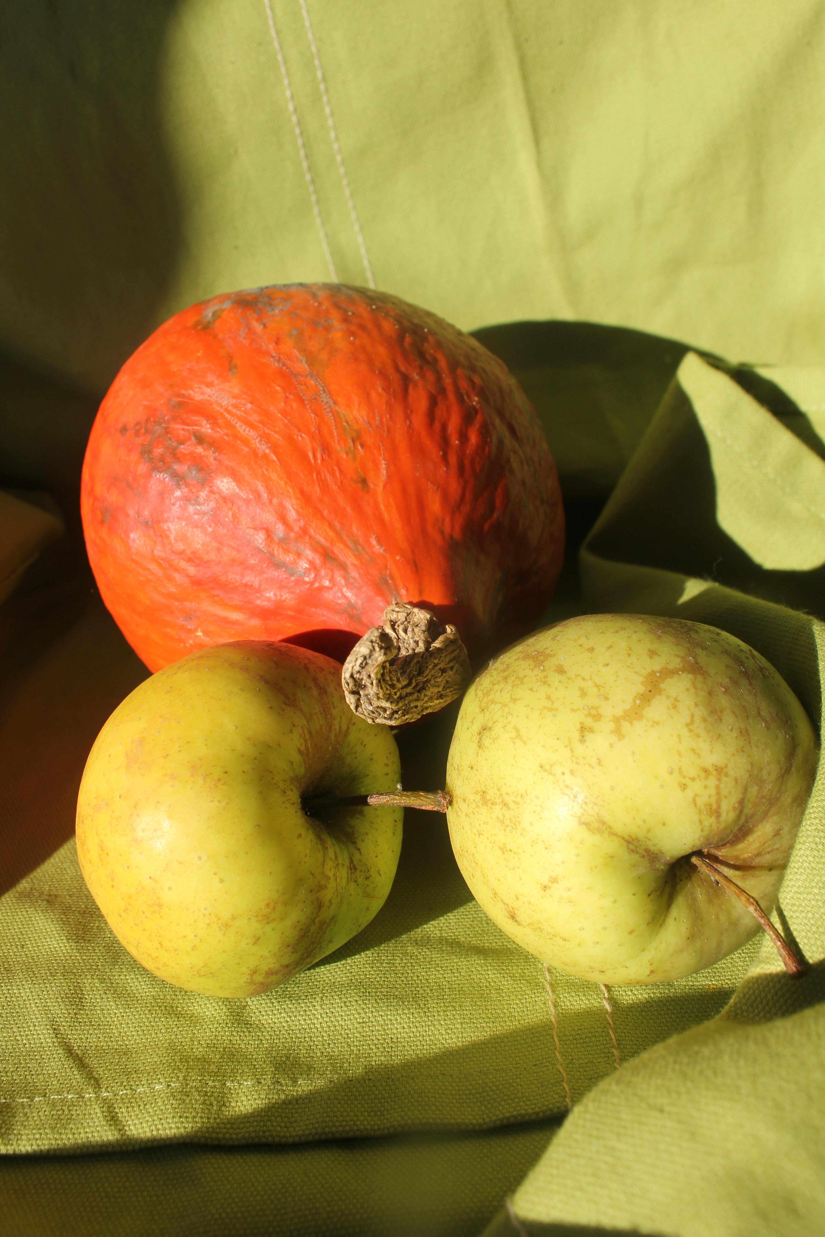 Fotoğraf Elma Meyve Yaprak çiçek Dekorasyon Gıda üretmek