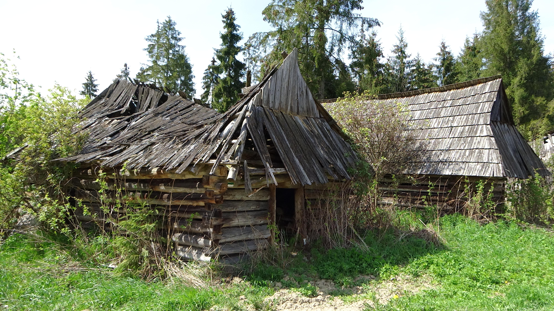 edificio monumento choza pueblo choza selva abandonado agricultura destruido polonia cabaa de madera paja rea