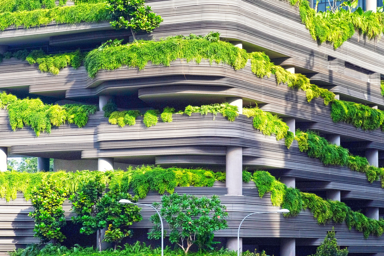 Gambar Arsitektur Bunga Bangunan Penglihatan Botani