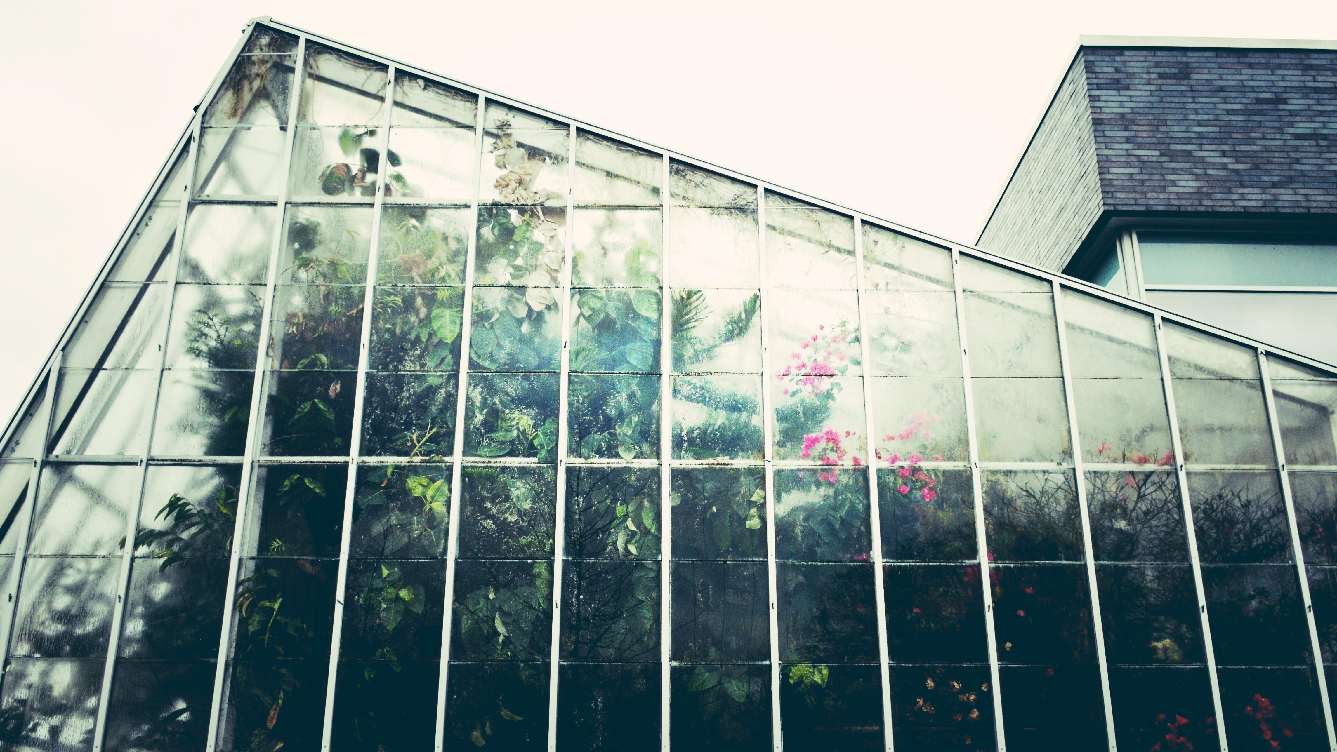... botani biru rumah kaca stadion tanaman hijau konservatori dalam ruangan Desain berkebun bentuk konstruksi kaca pertanian perkotaan 4578x2576 ... & Gambar : Arsitektur pertumbuhan menanam jendela pencakar langit ...