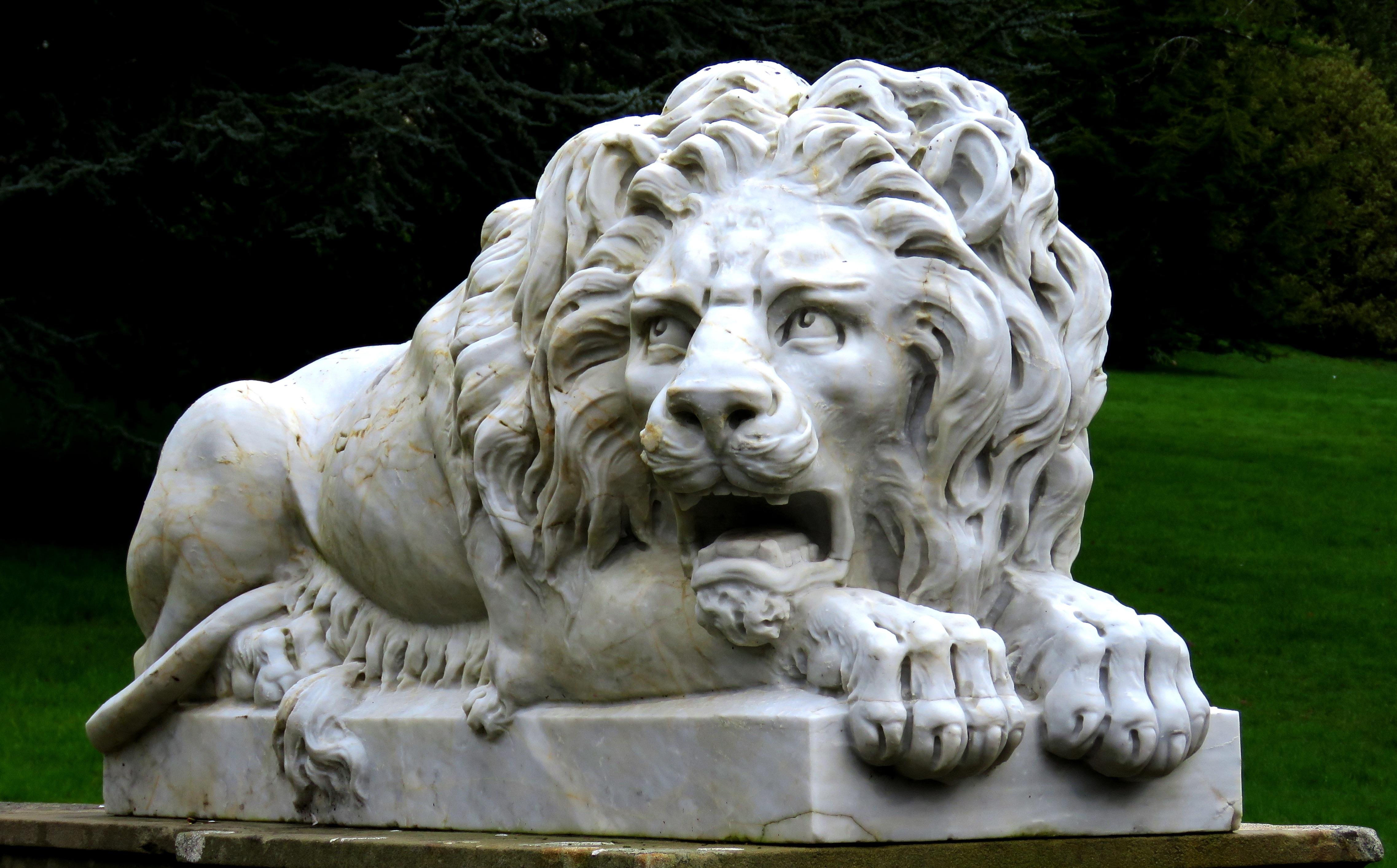 Картинка лев статуя