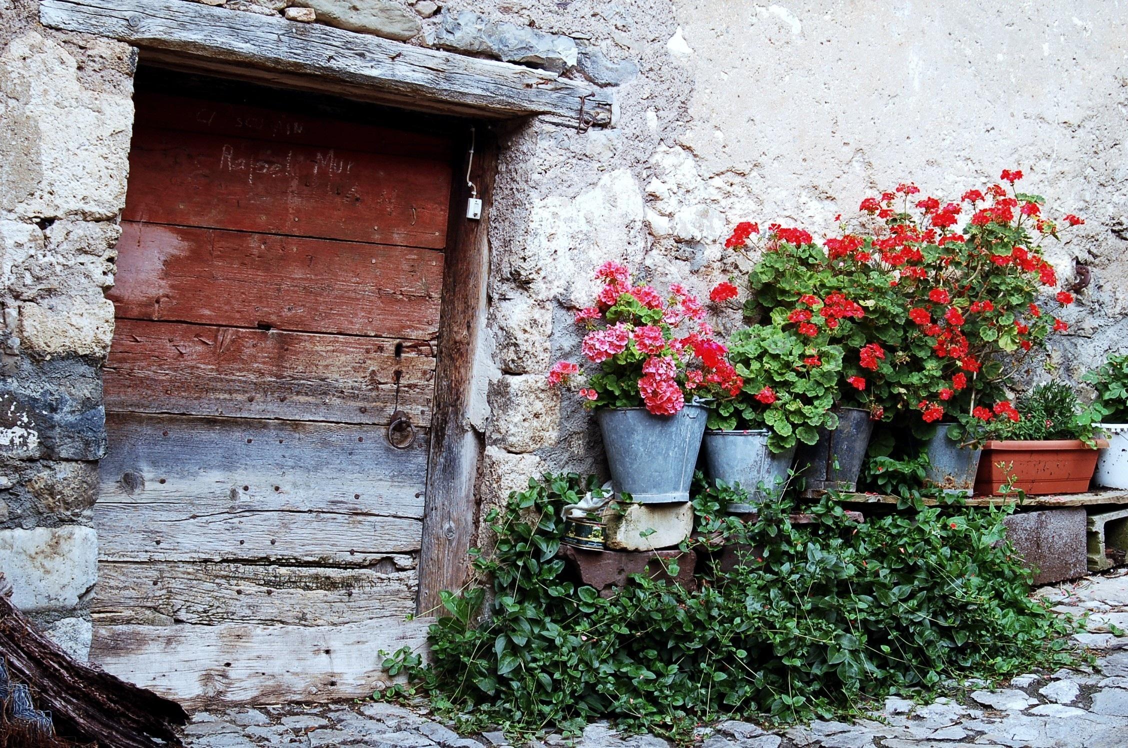 Fotos Gratis Arquitectura Planta Palacio Flor Ventana Antiguo