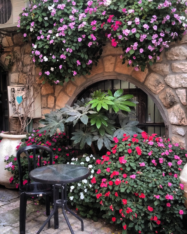 Улица цветочная картинки