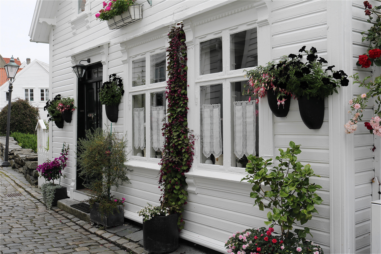 Fotos gratis arquitectura la carretera flor edificio for Disenos de porches de casas