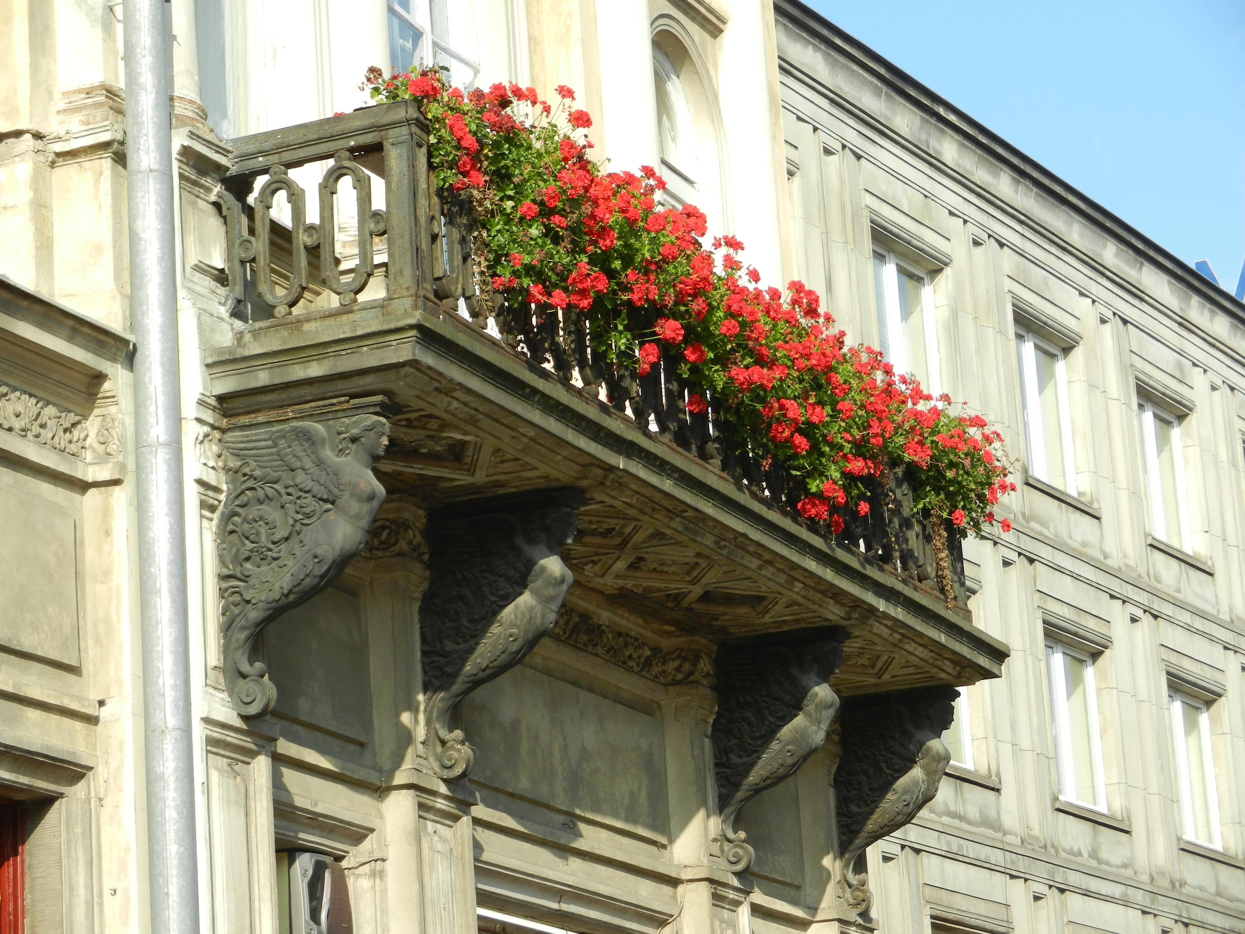Fotos gratis arquitectura calle casa flor ventana edificio palacio ciudad balc n - Persianas palacio ...