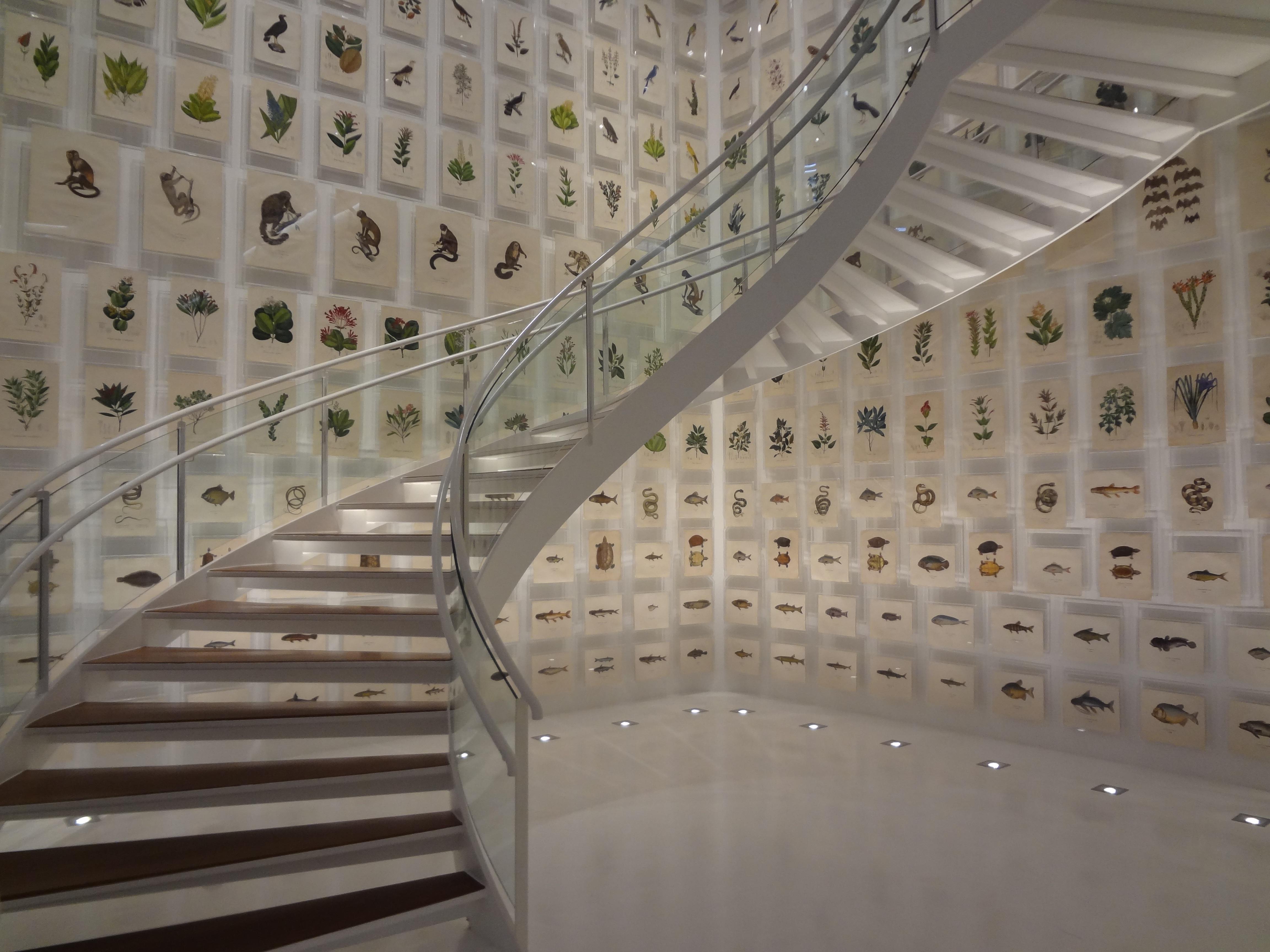 fotos gratis arquitectura estructura piso escalera