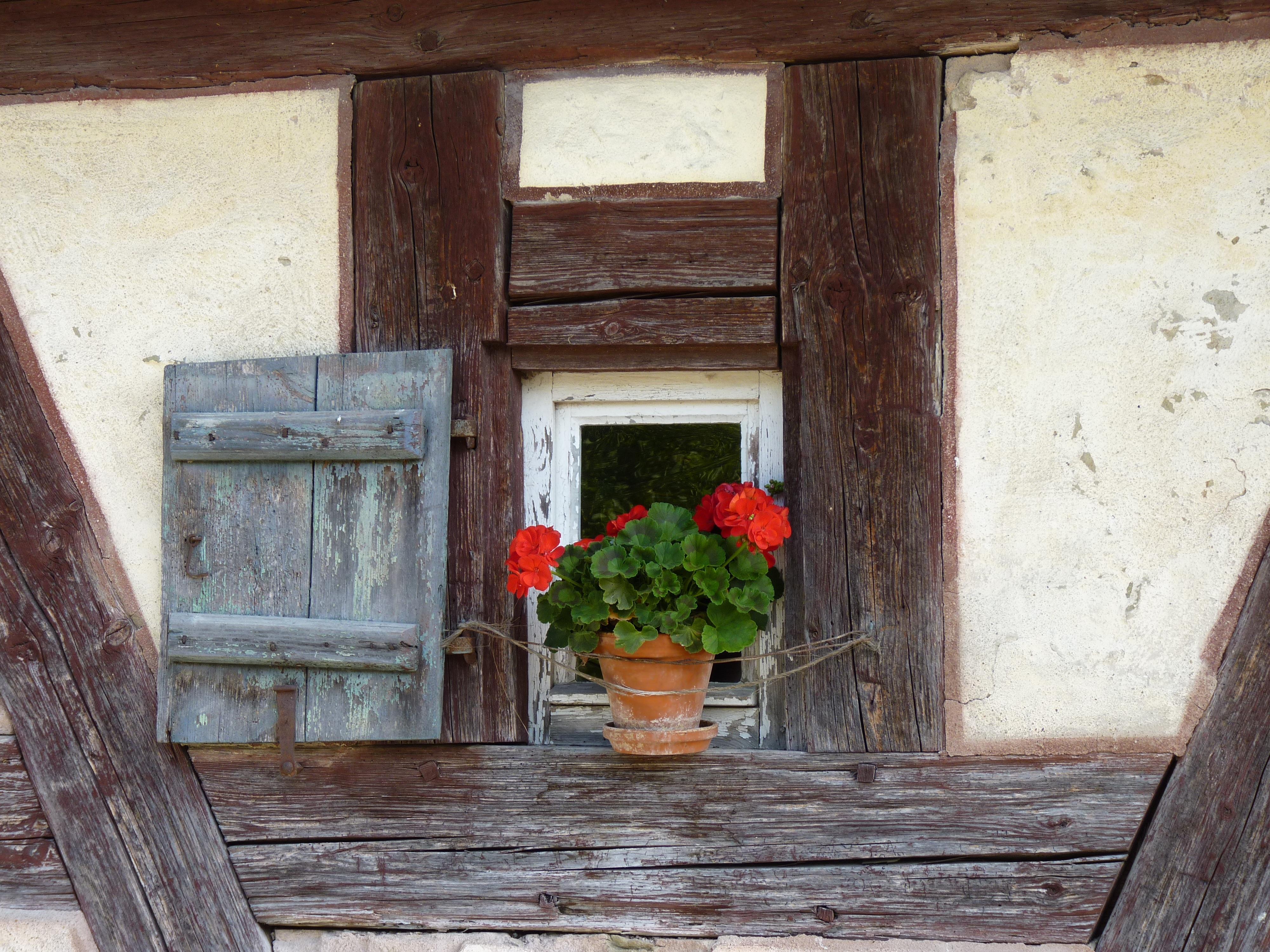 Fotos gratis : arquitectura, casa, flor, ventana, granero, pared ...