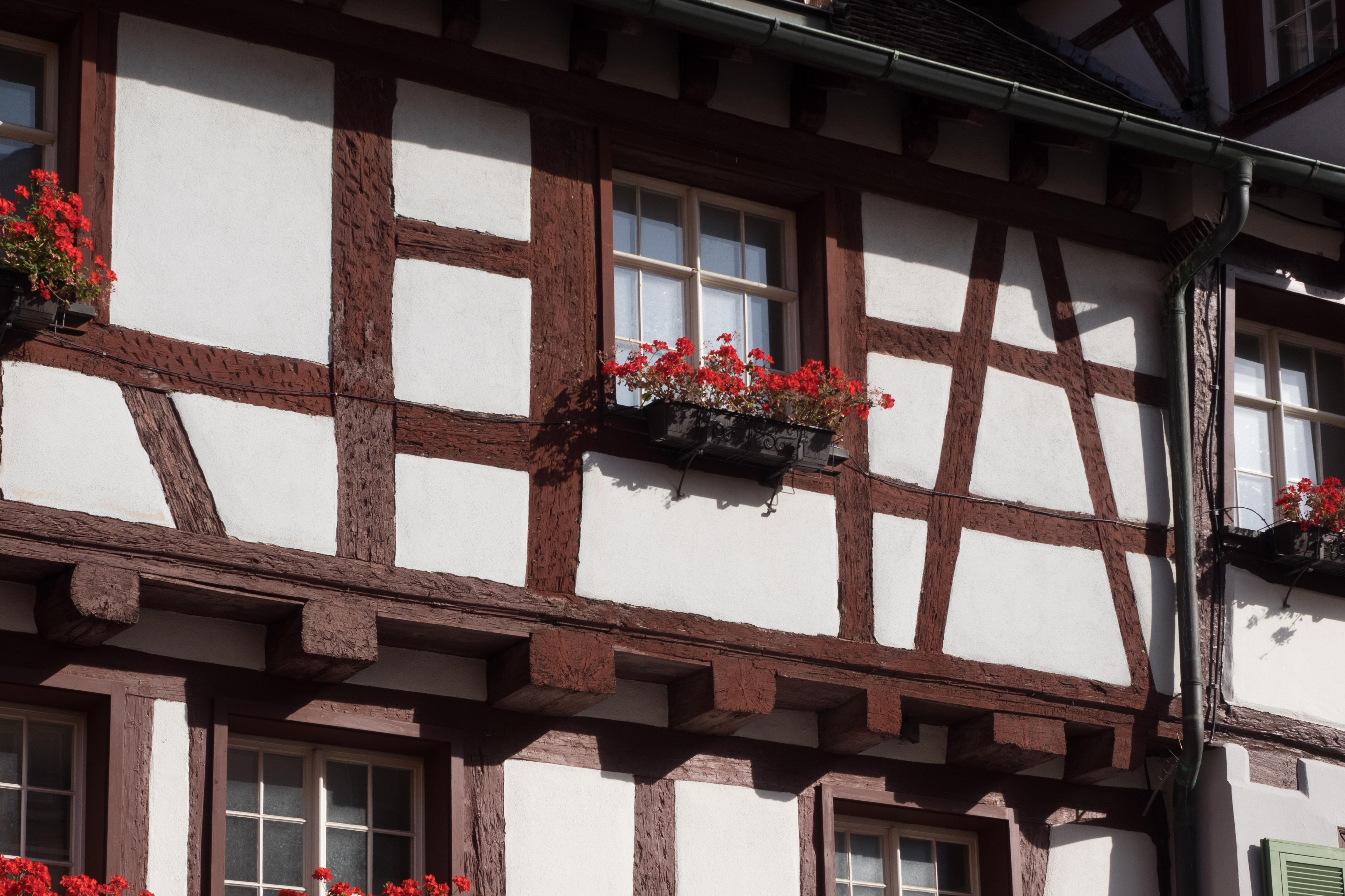 Kostenlose foto : die Architektur, Holz, Haus, Blume, Fenster ...