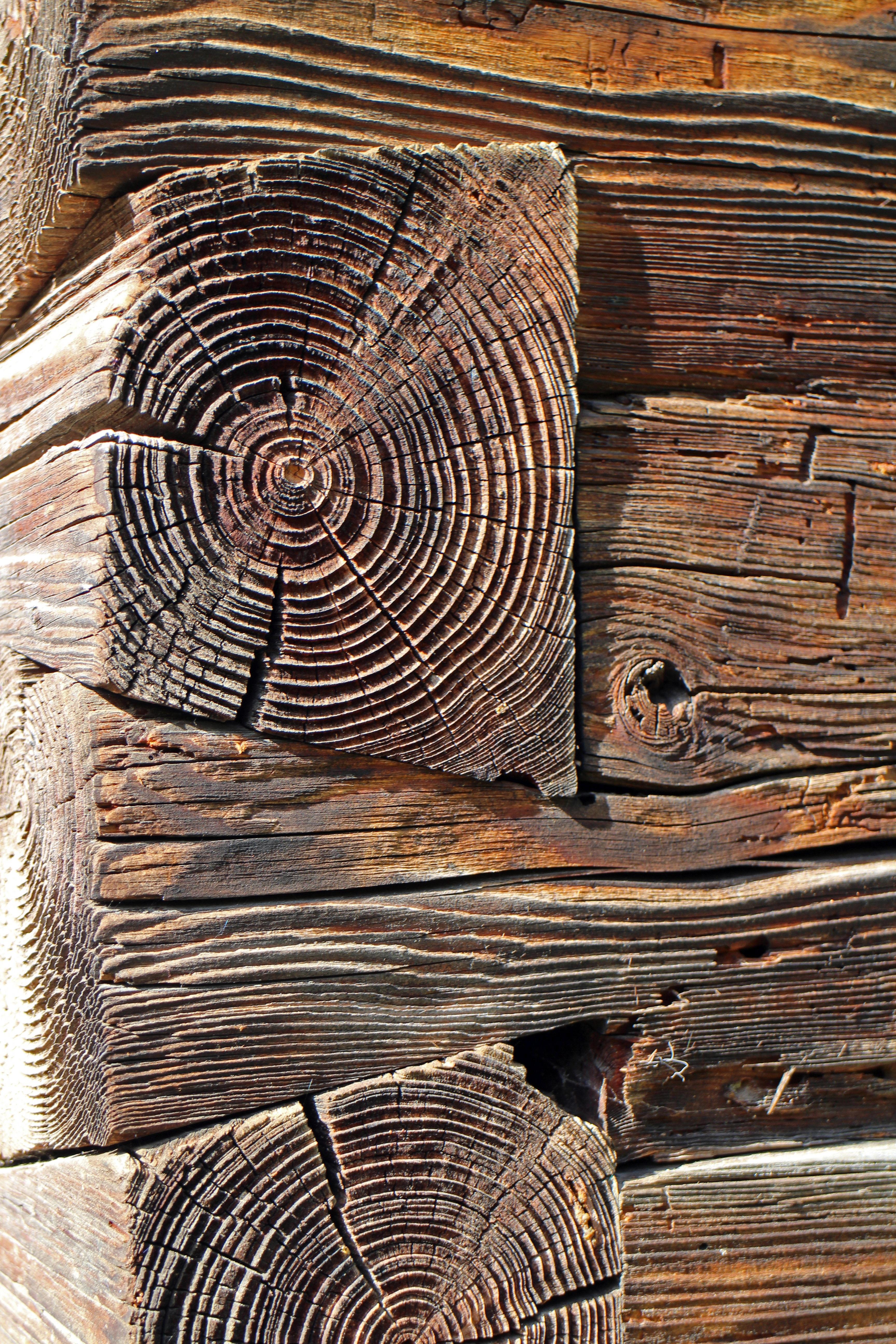 connexion bois le procd du plancher mixte boisbton connect est utilis depuis une quarantaine. Black Bedroom Furniture Sets. Home Design Ideas