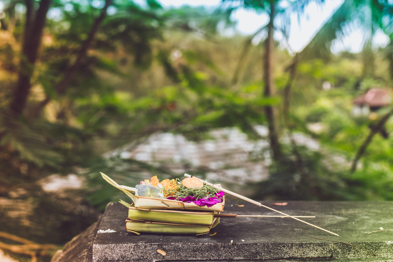 Gambar Seni Asia Bali Balinese Offerings Keranjang
