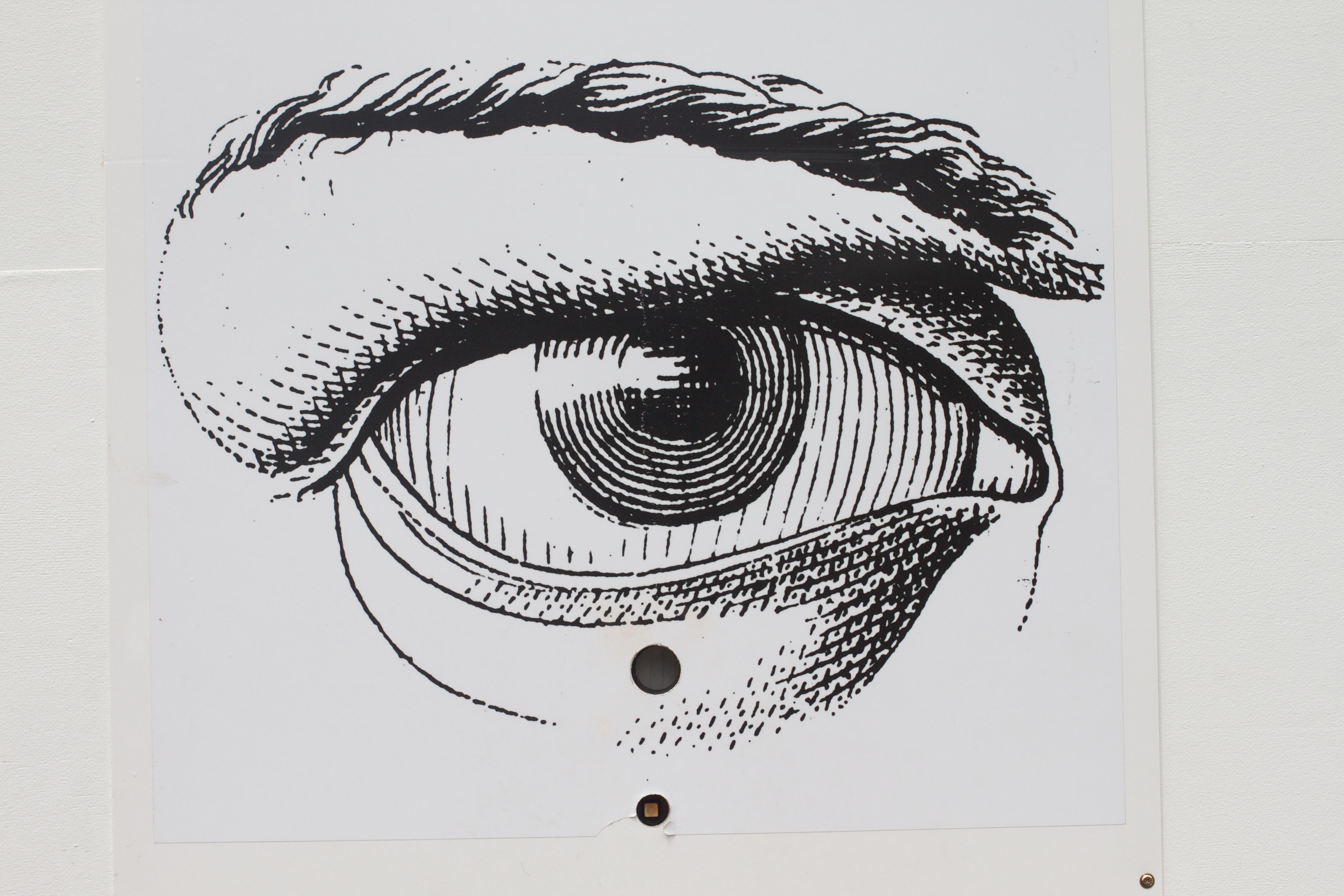 Gambar Sketsa Ilustrasi Mata Kepala Organ Gambar