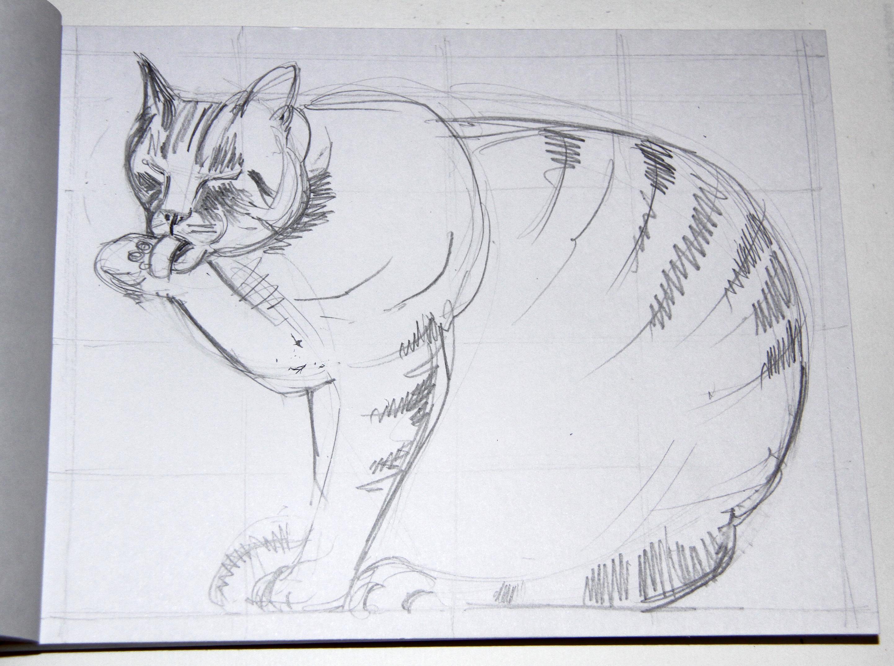 Free Images Artwork Sketch Illustration Chat Zeichnung Dessin