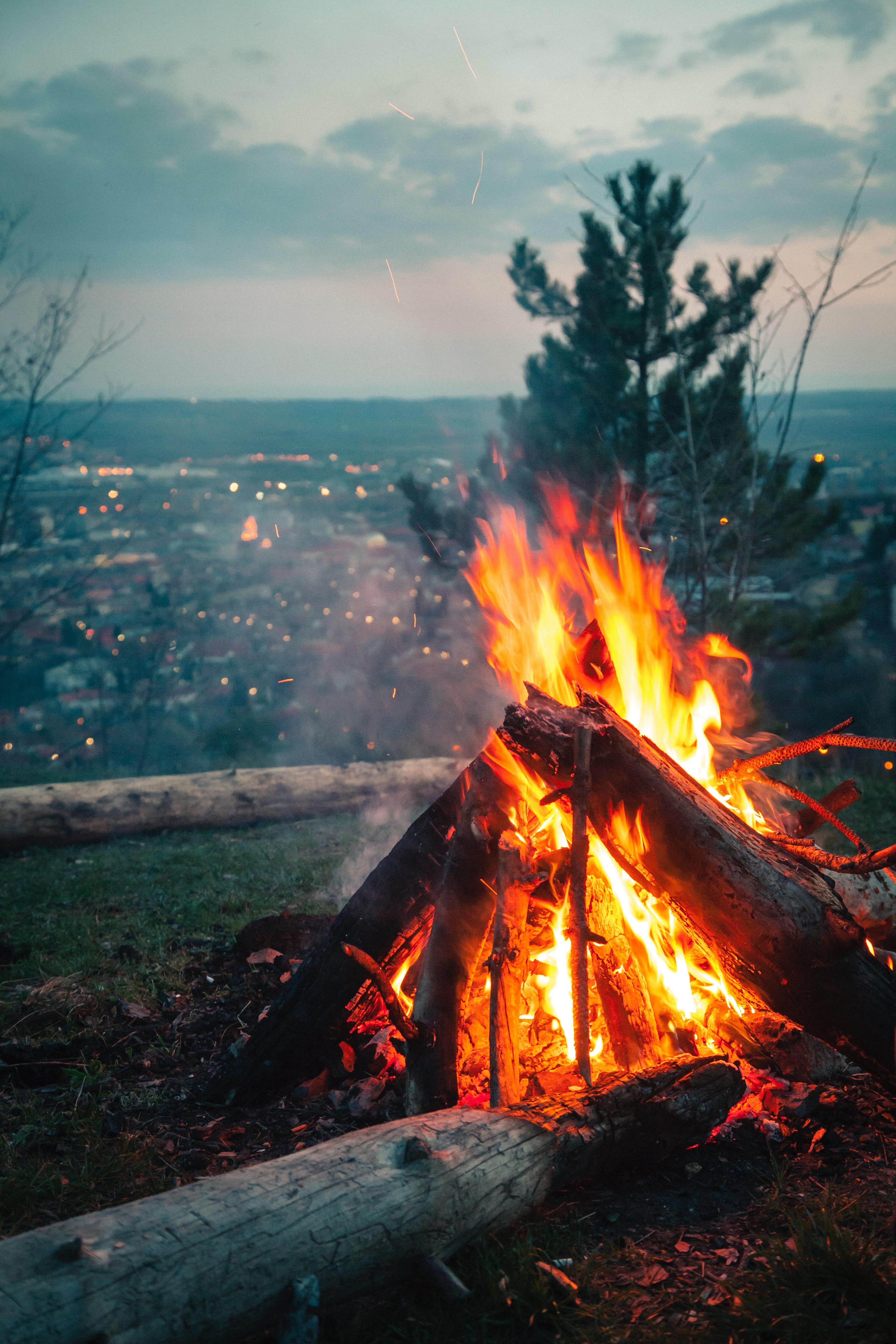 Terbaru 28 Foto Pemandangan Free Fire Arka Gambar