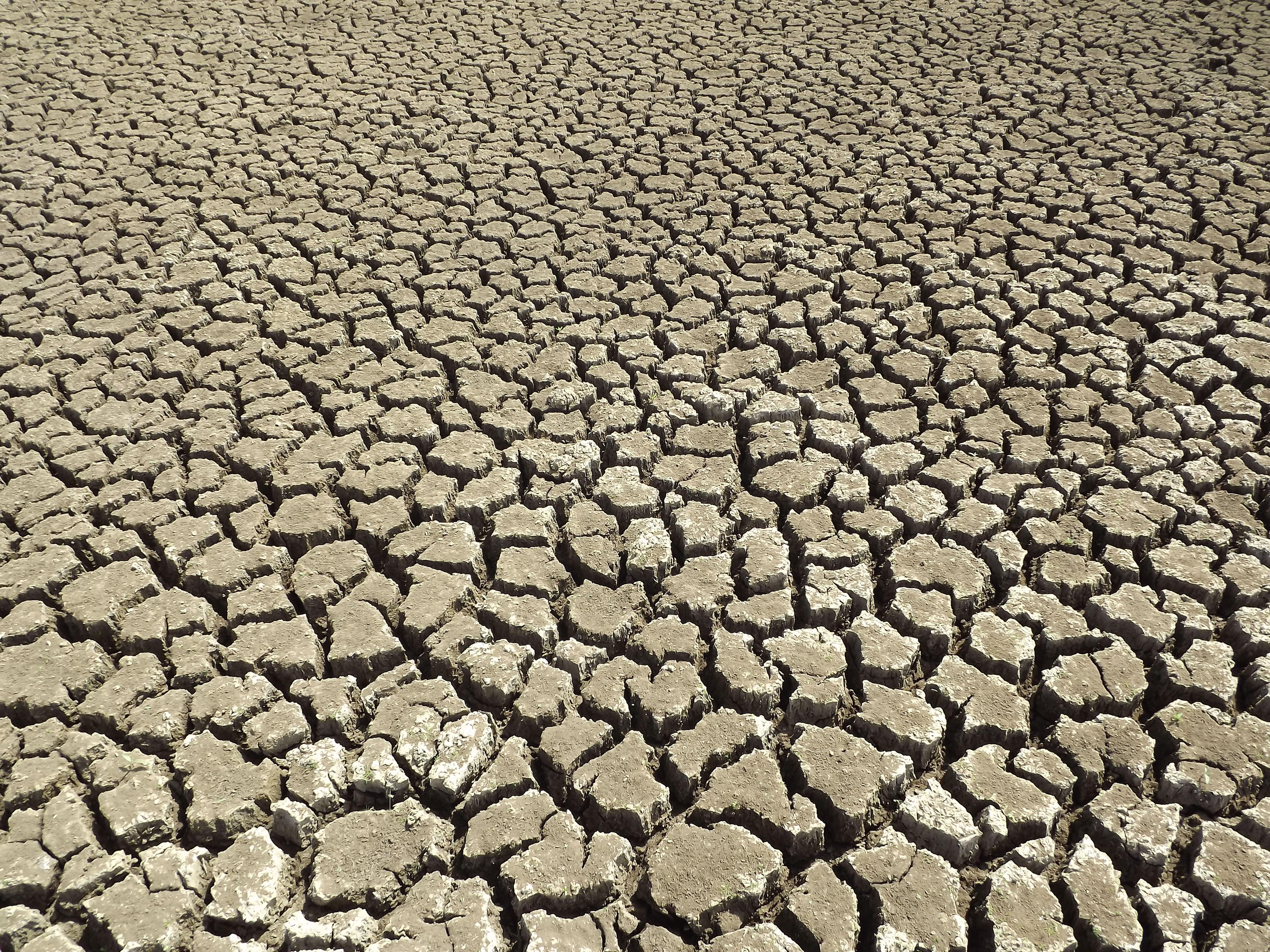 Free Images Asphalt Dry Soil Backcountry Natural