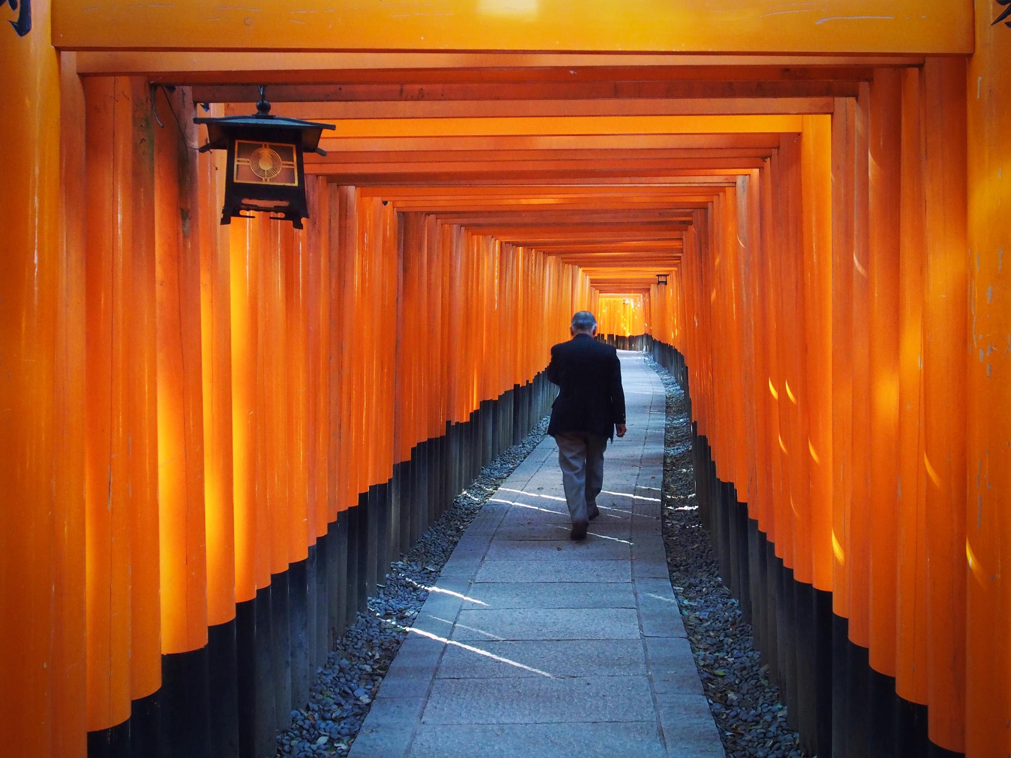 Fotos gratis sala color amarillo jap n dise o de for Diseno pasillos interiores