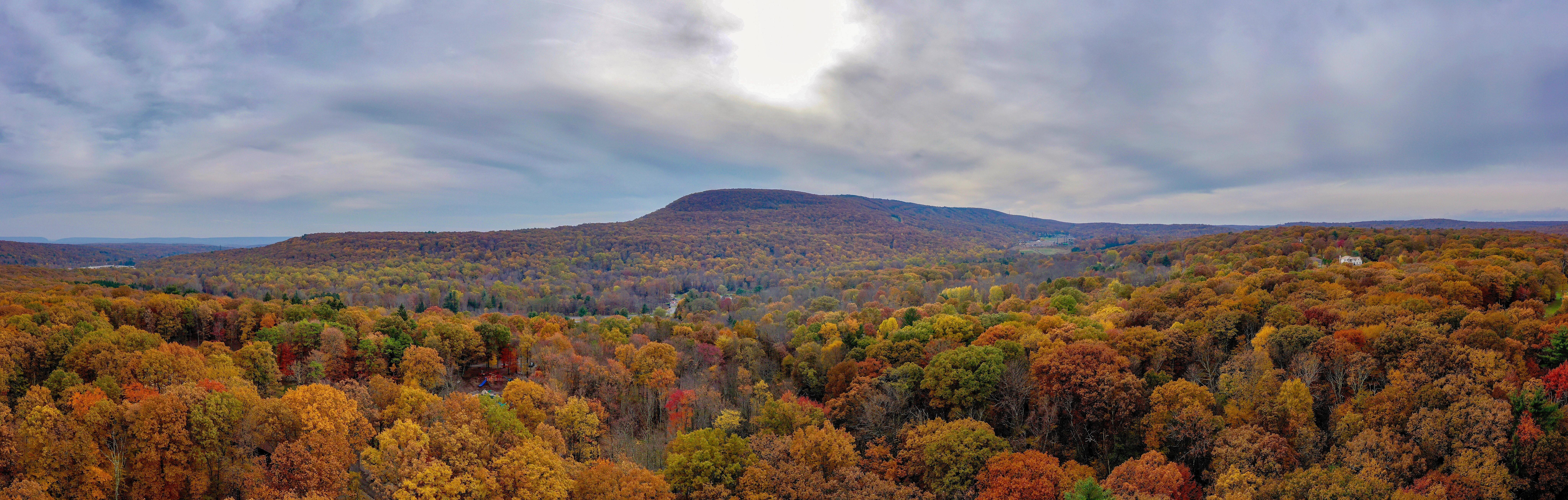 foto de Images Gratuites : l'automne, Automne couleurs, feuilles d'automne ...