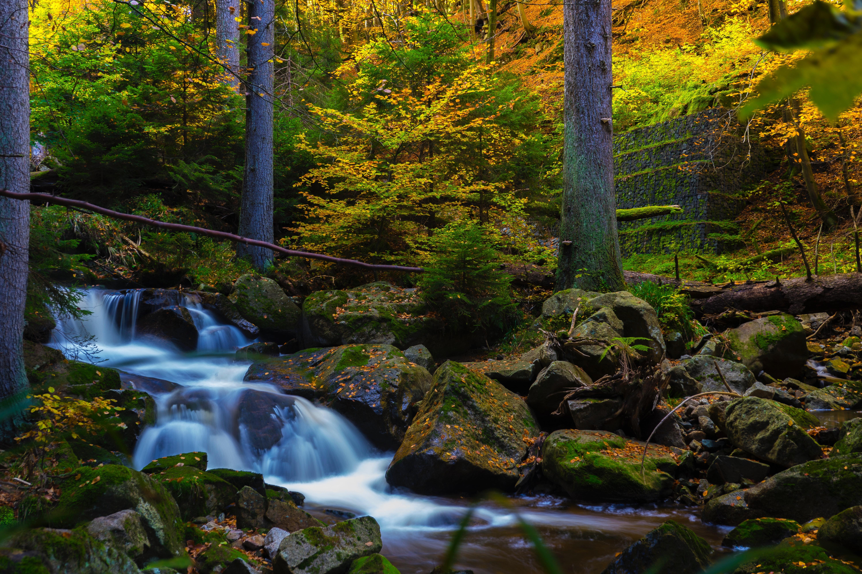 Free Images : background image, creek, daylight, desktop backgrounds, desktop wallpaper ...