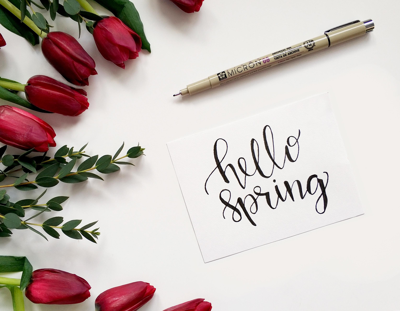 Fotos Gratis Fondo Boligrafo Florecer Floreciente Flor De