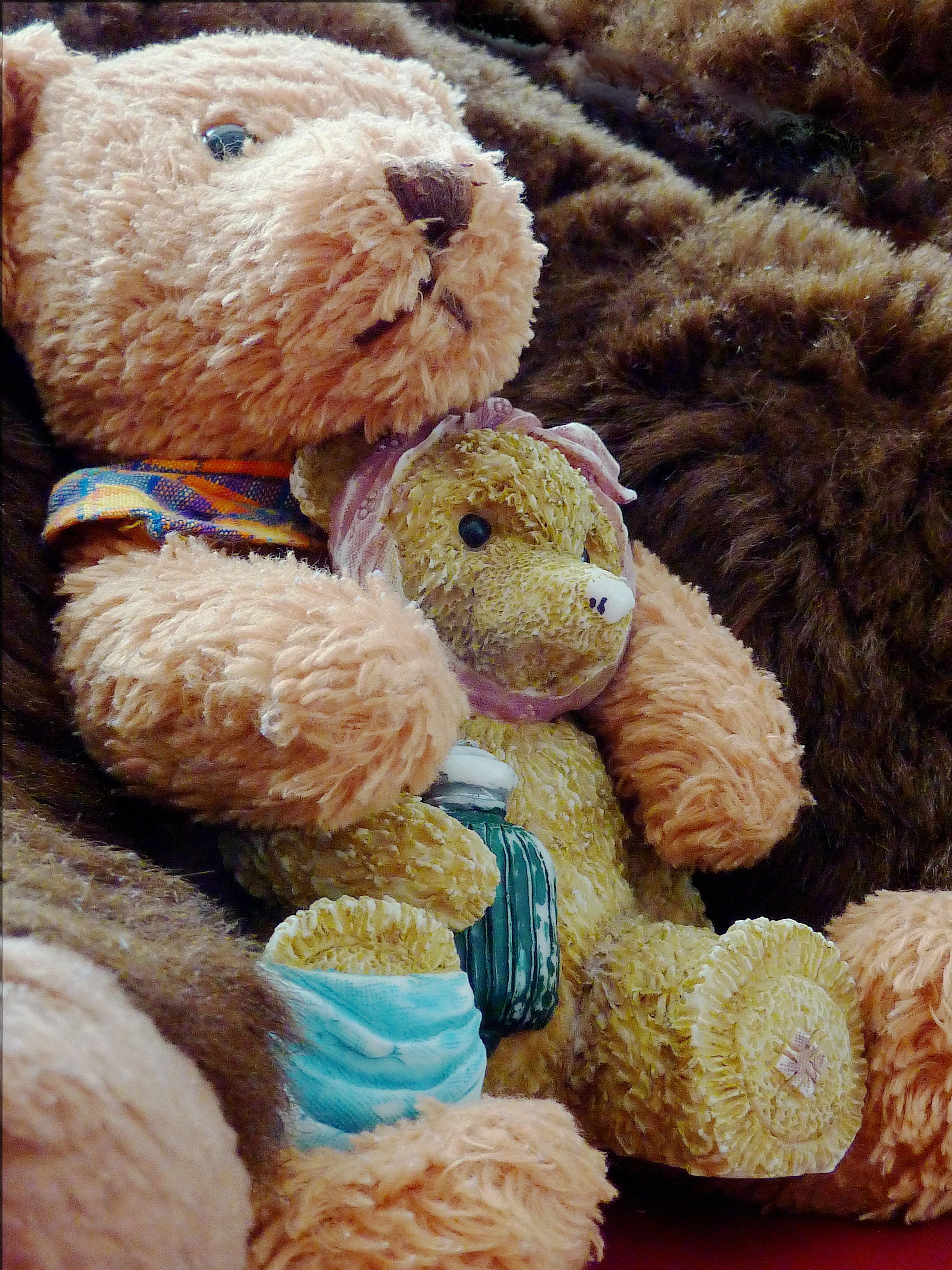 Gambar Bar Cinta Bahan Beruang Coklat Beruang Teddy Benang