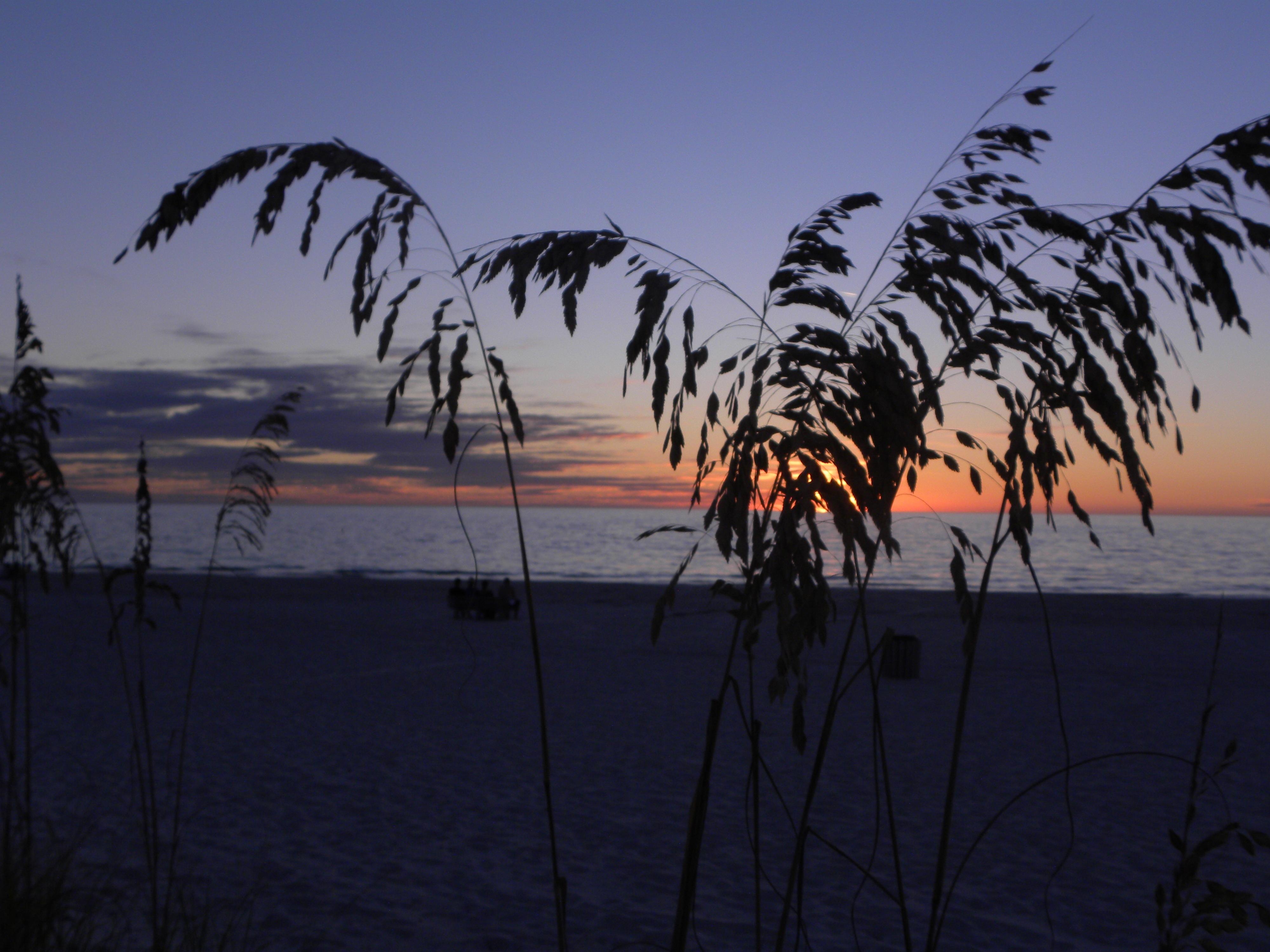 7300 Koleksi Gambar Pemandangan Pantai Berwarna Terbaik