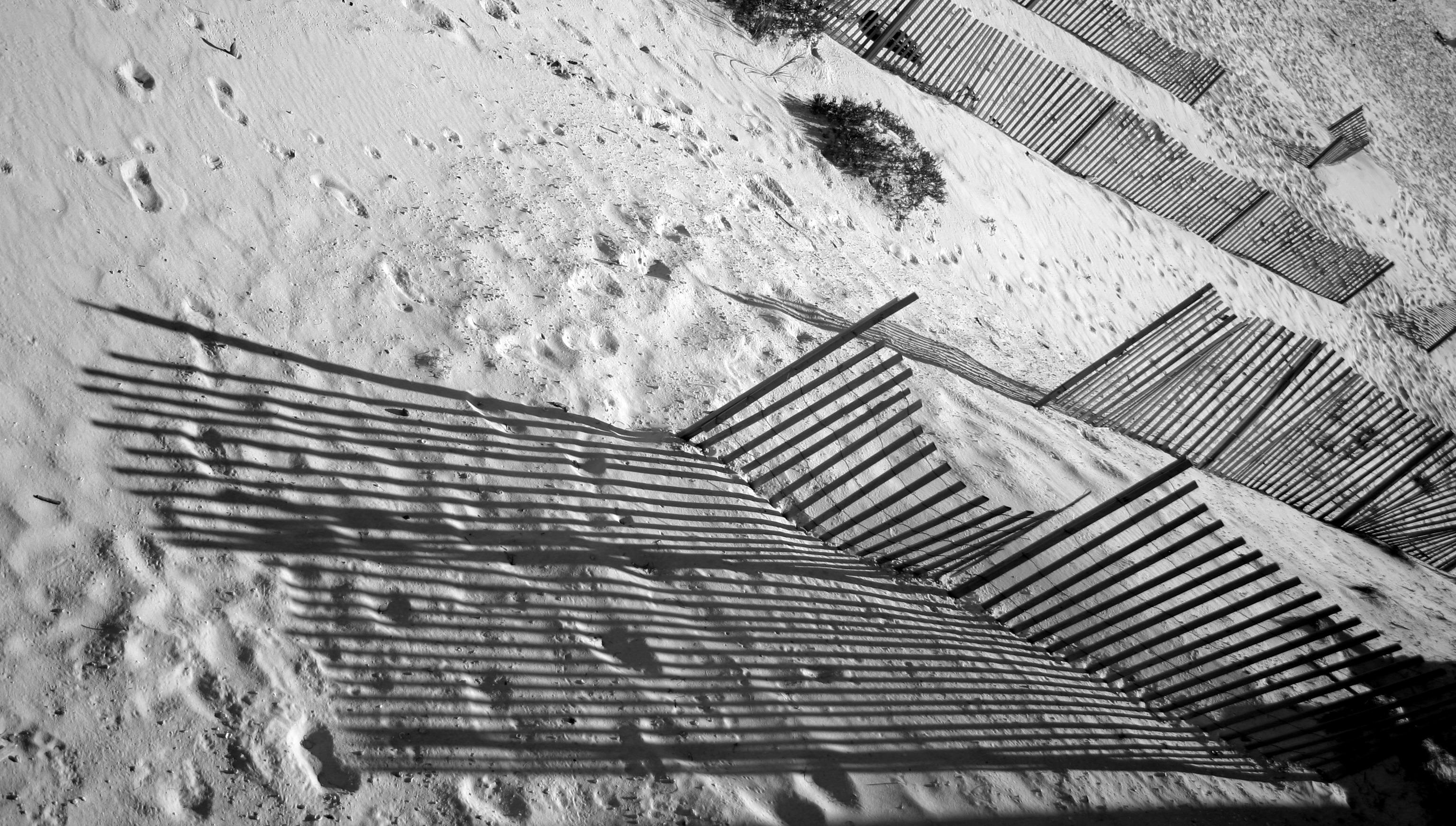Gambar Pemandangan Salju Hitam Dan Putih Kayu Tekstur