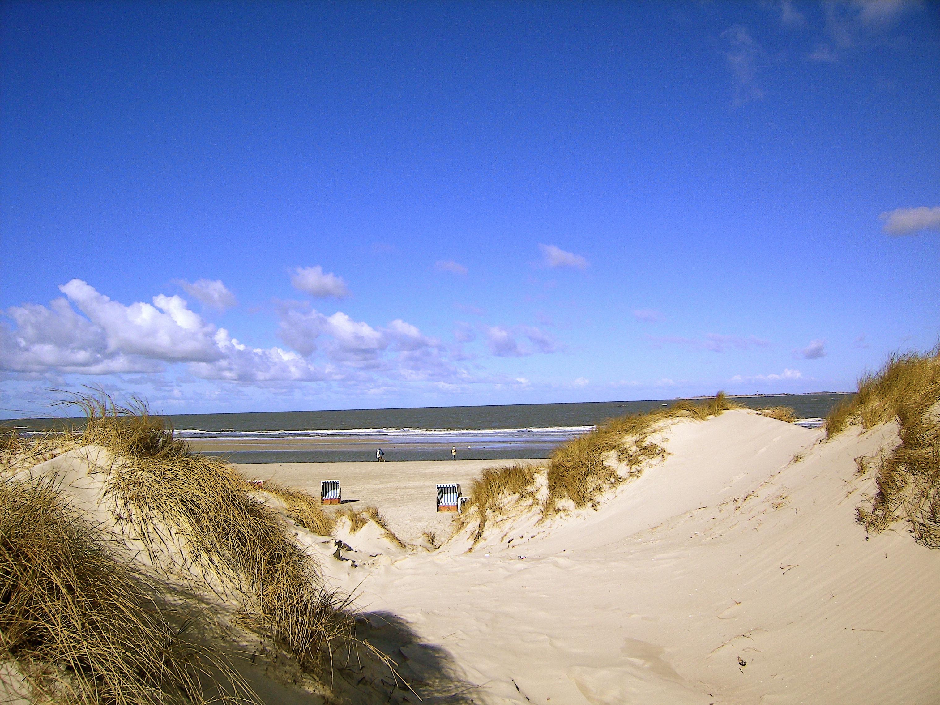 Images gratuites paysage mer c te la nature le sable for Agence horizon paysage