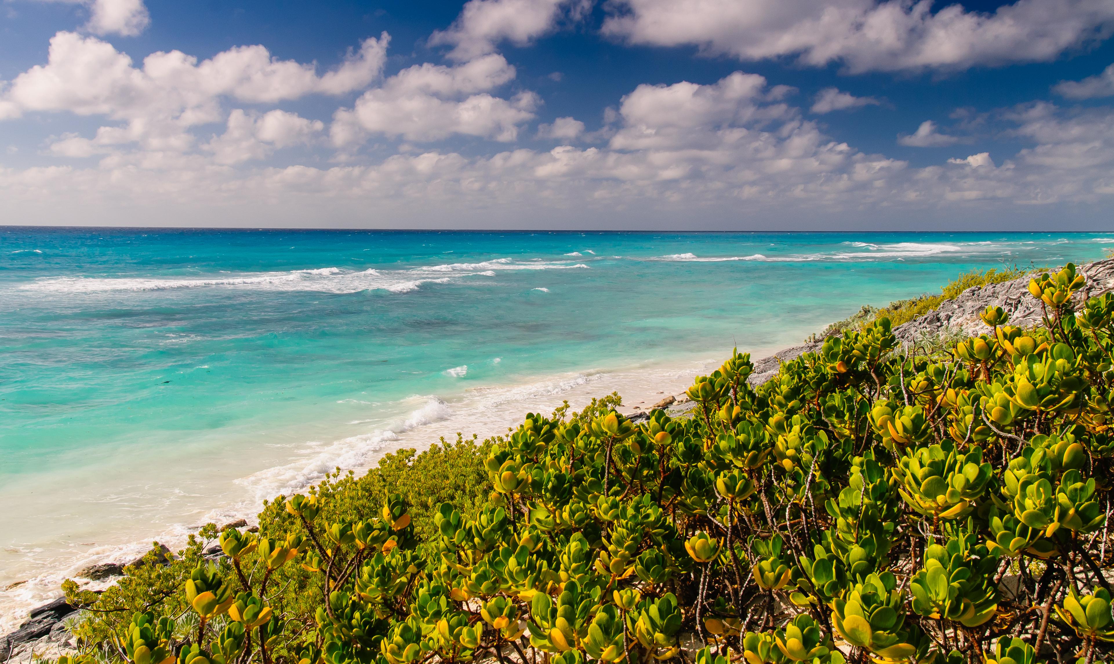 все фото морского побережья кубы благополучной