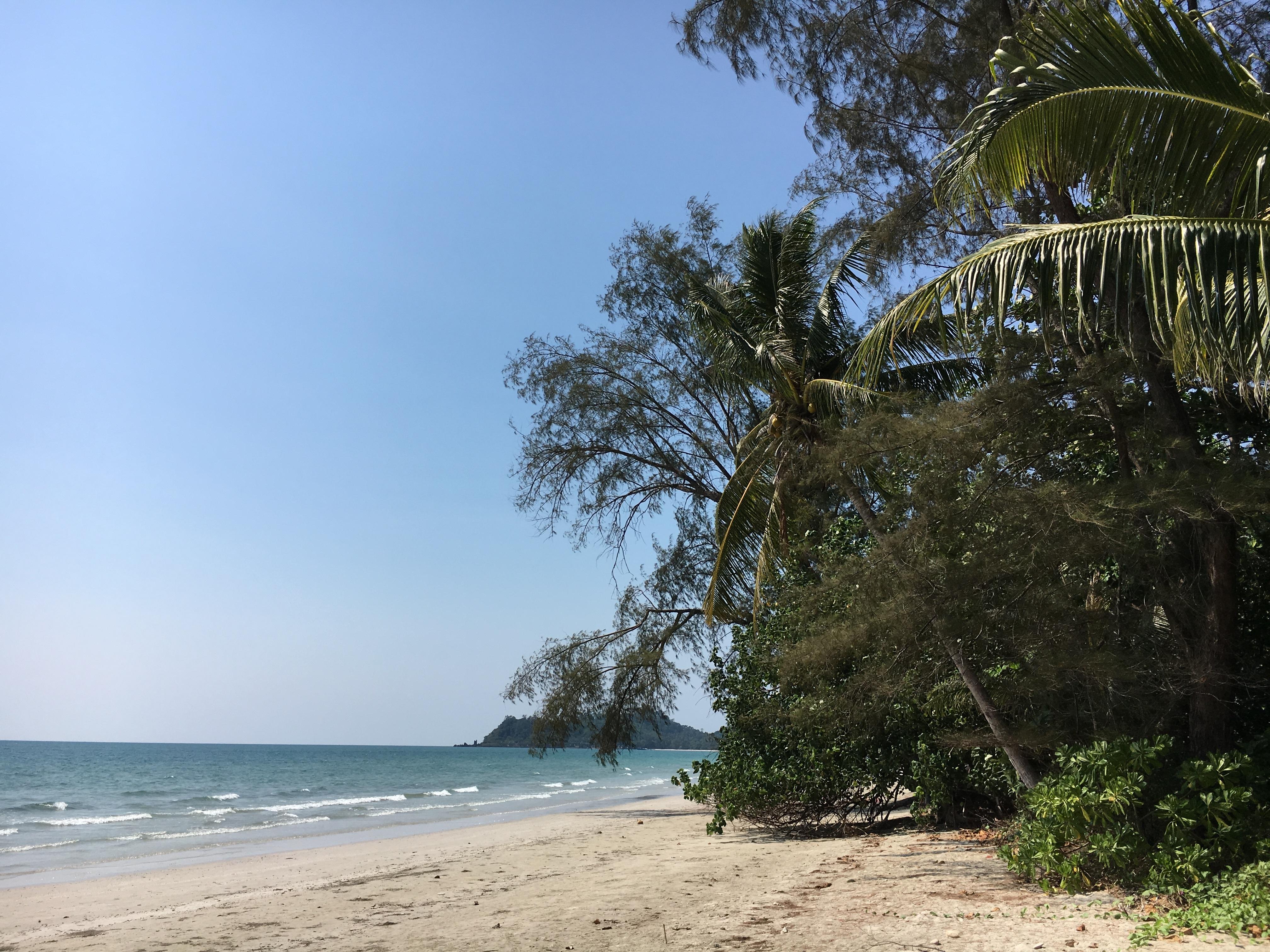 natur meer bilder tropen - photo #28