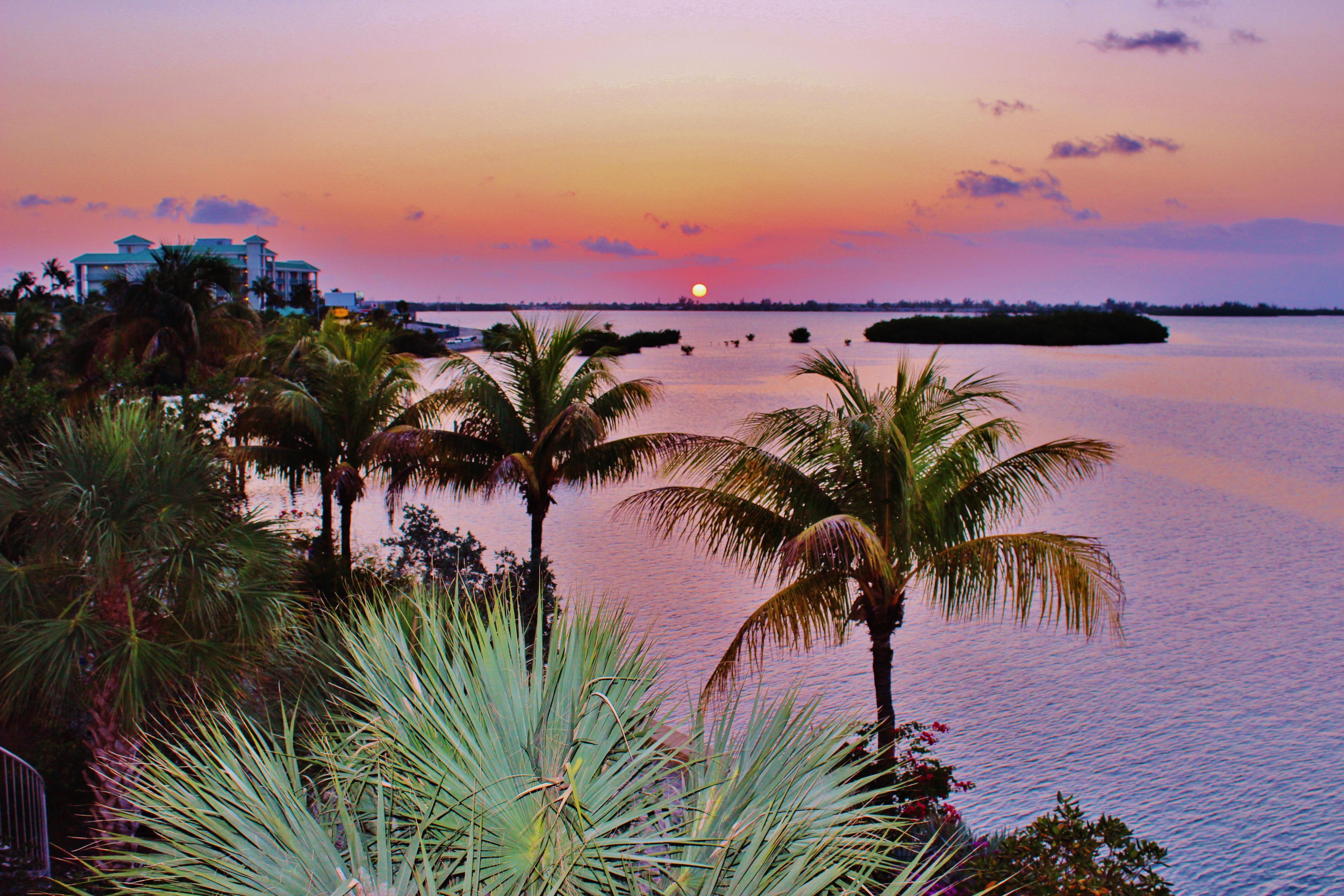 Free Images Beach Landscape Sea Coast Tree Ocean Sky Sunrise Sunset Shore Vacation